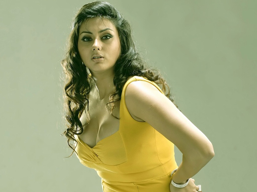 namitha in yellow 4220895 1024x768 all for desktop