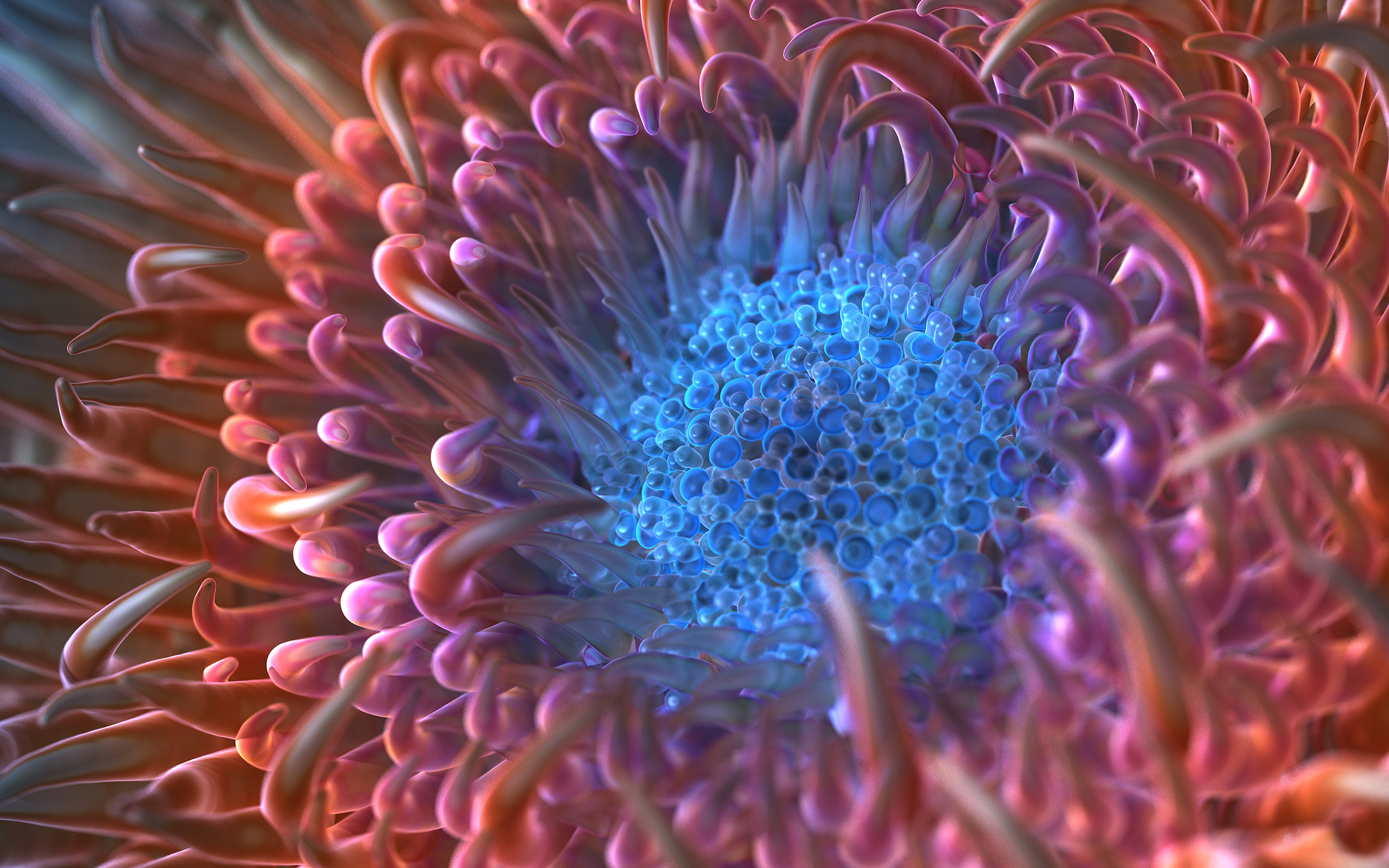 Digital Anemone Flower
