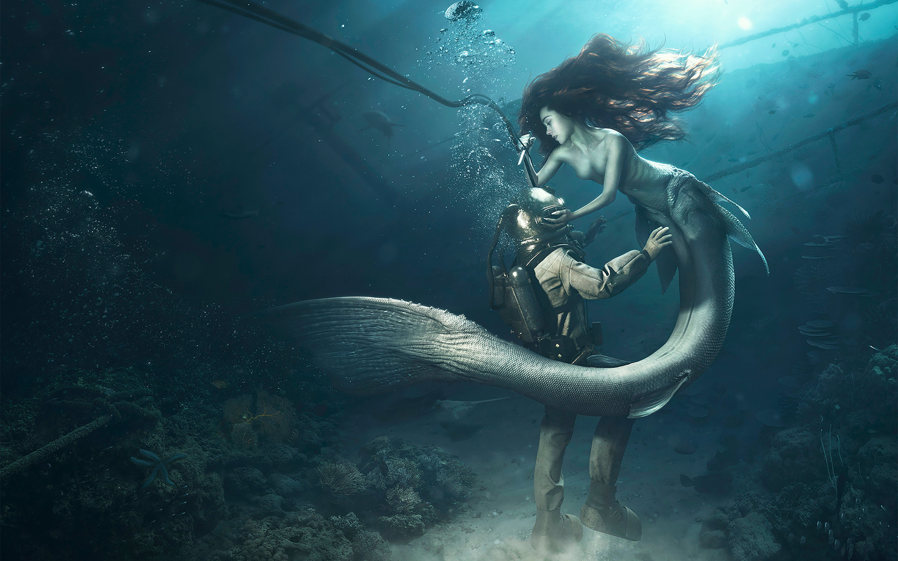 Diver and the Mermaid