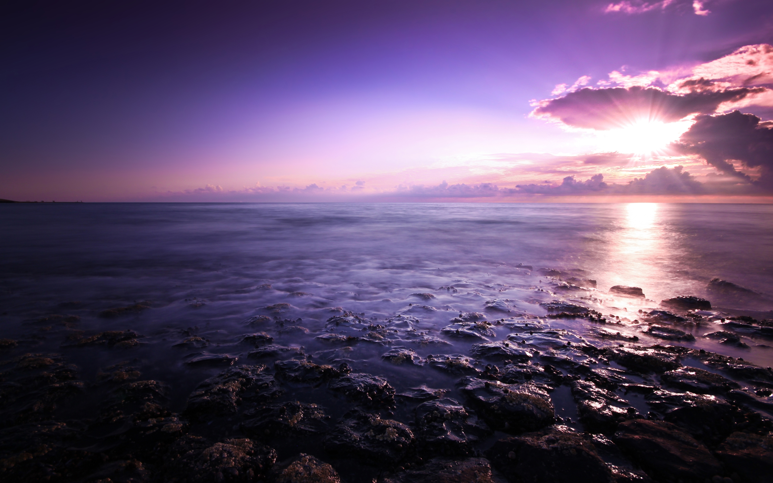 Purple Seascape 1111.39 Kb