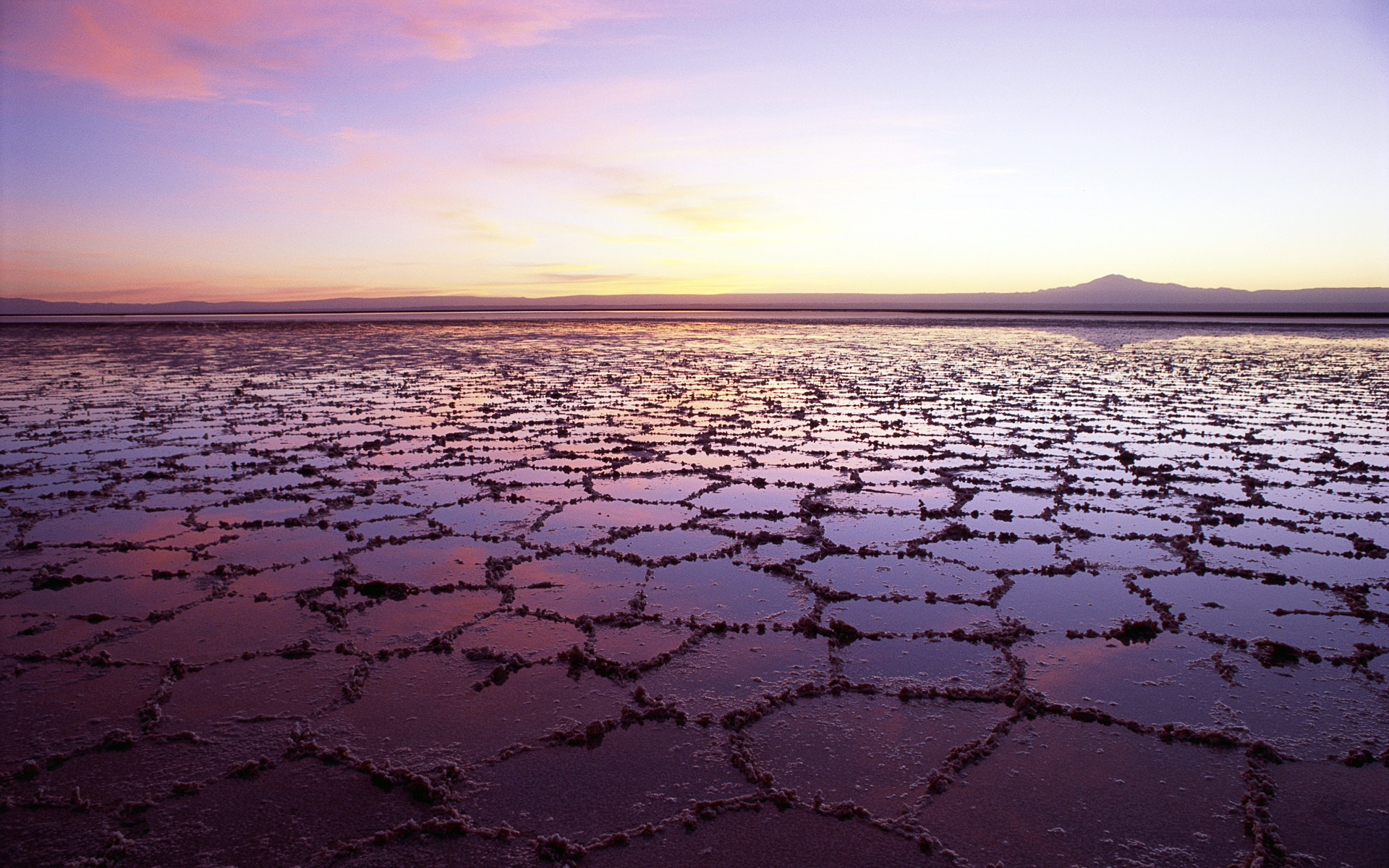 Salt Lake in Chile