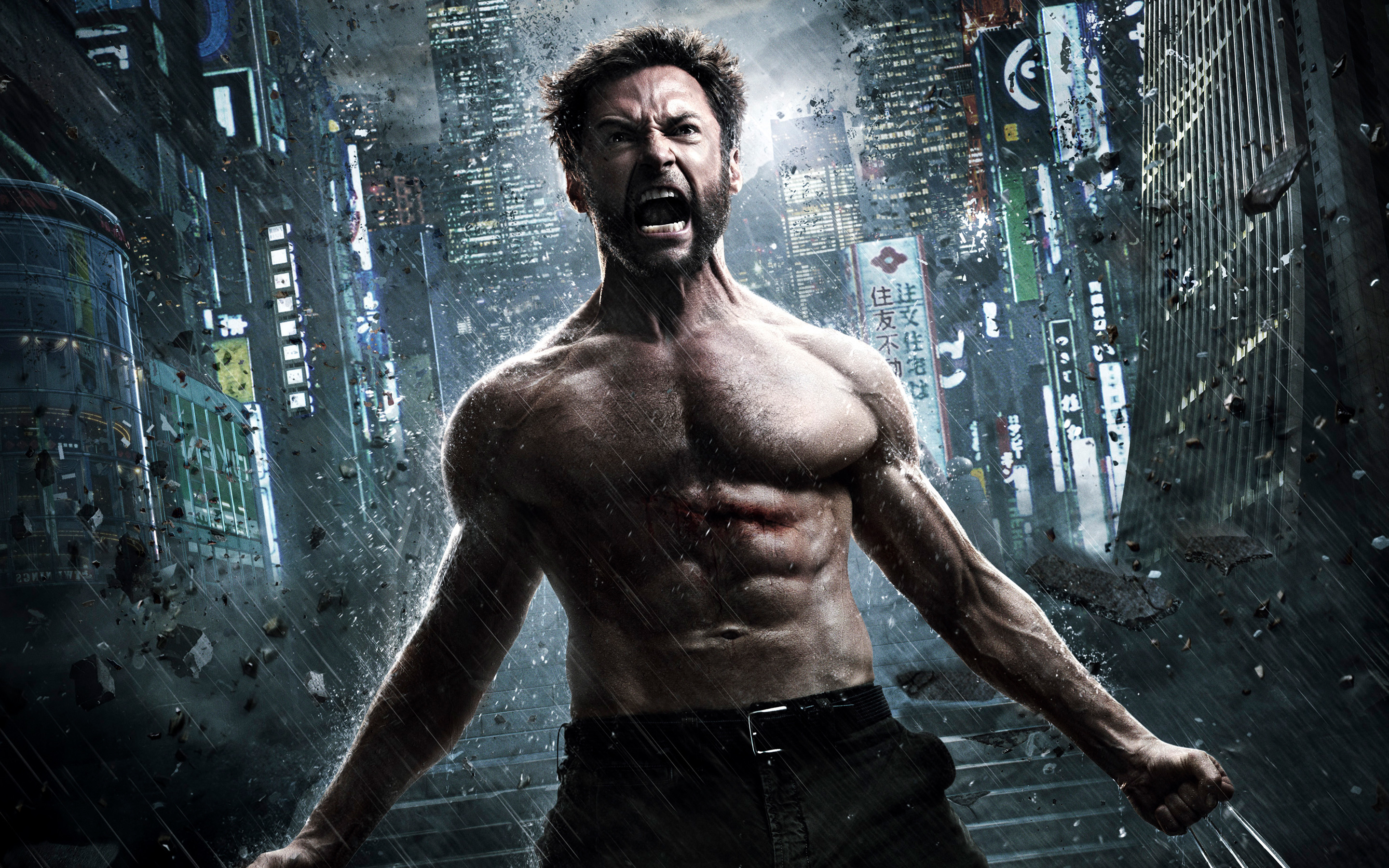 The Wolverine 2013 1273.04 Kb