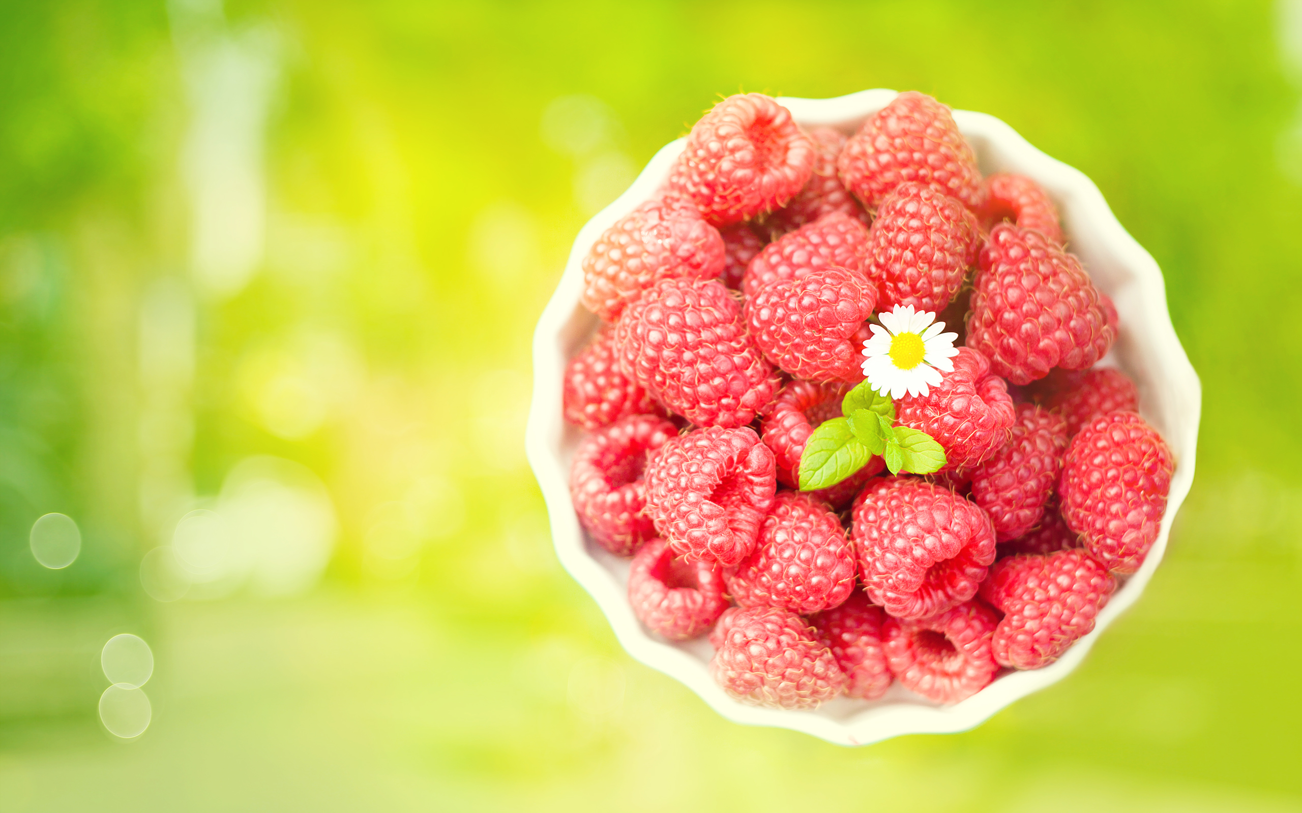 Raspberries 3017.41 Kb