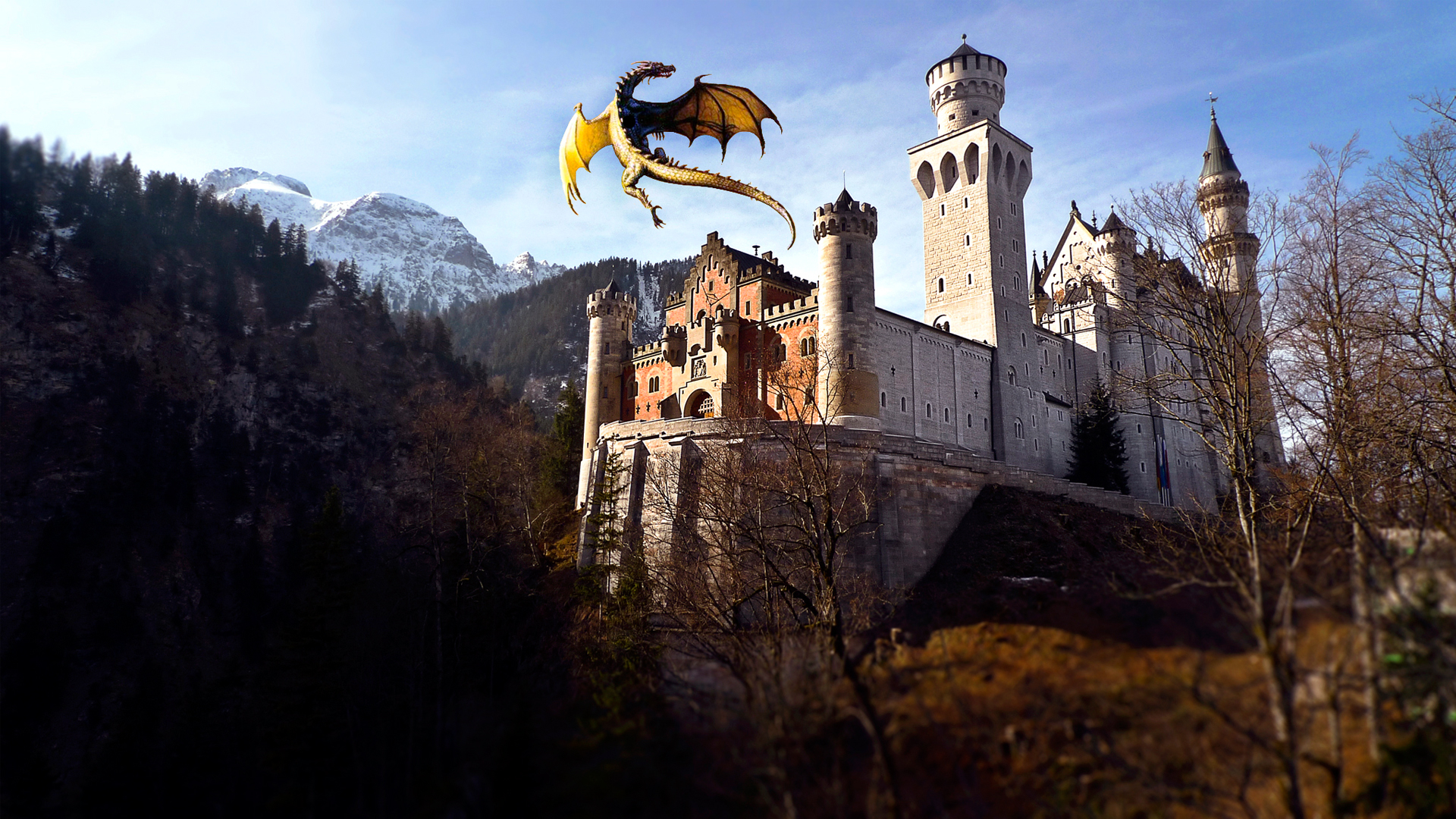 Dragon & Castle 1562.87 Kb