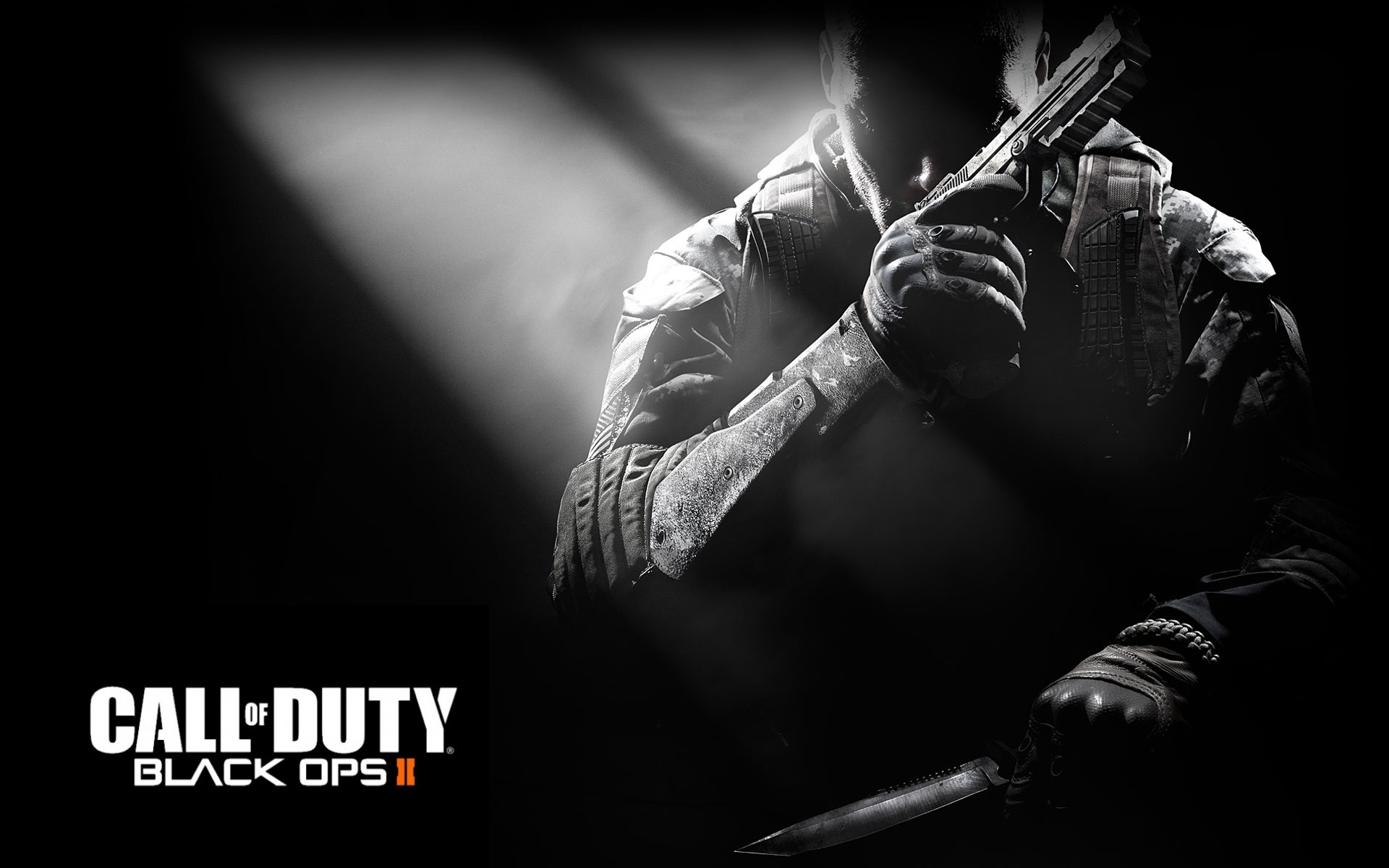 Call of Duty Black Ops 2 1428.78 Kb