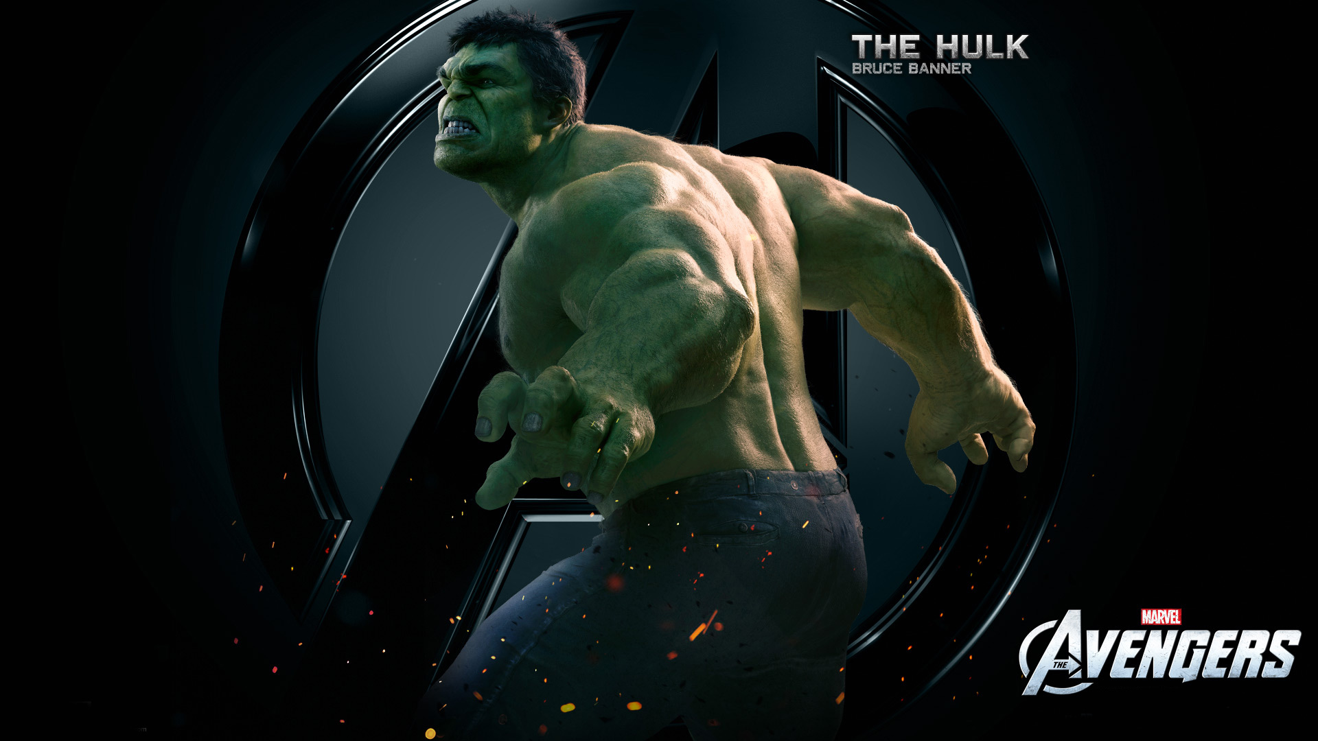 The Hulk Bruce Banner 2315.03 Kb