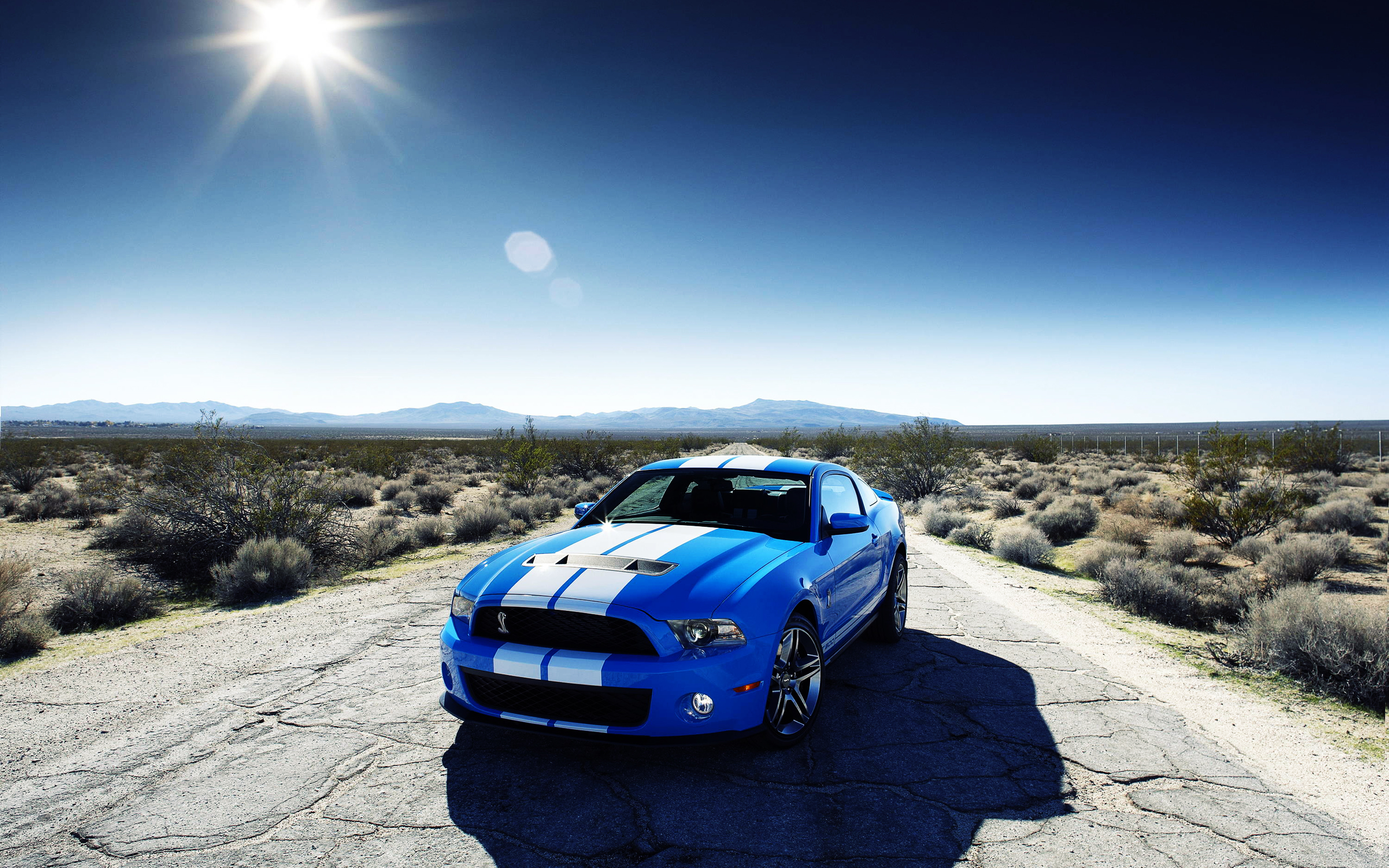 Ford Shelby GT500 Car 332.33 Kb