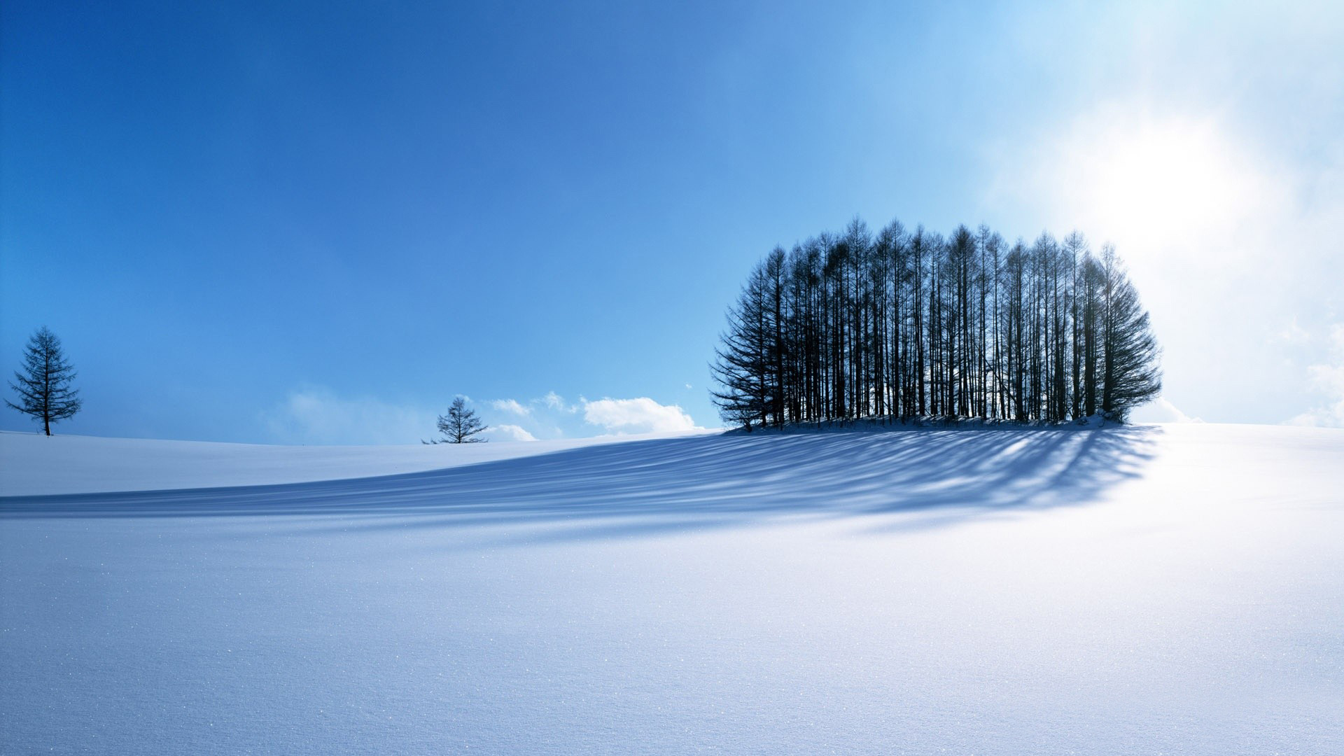 Winter Scenery 407.97 Kb