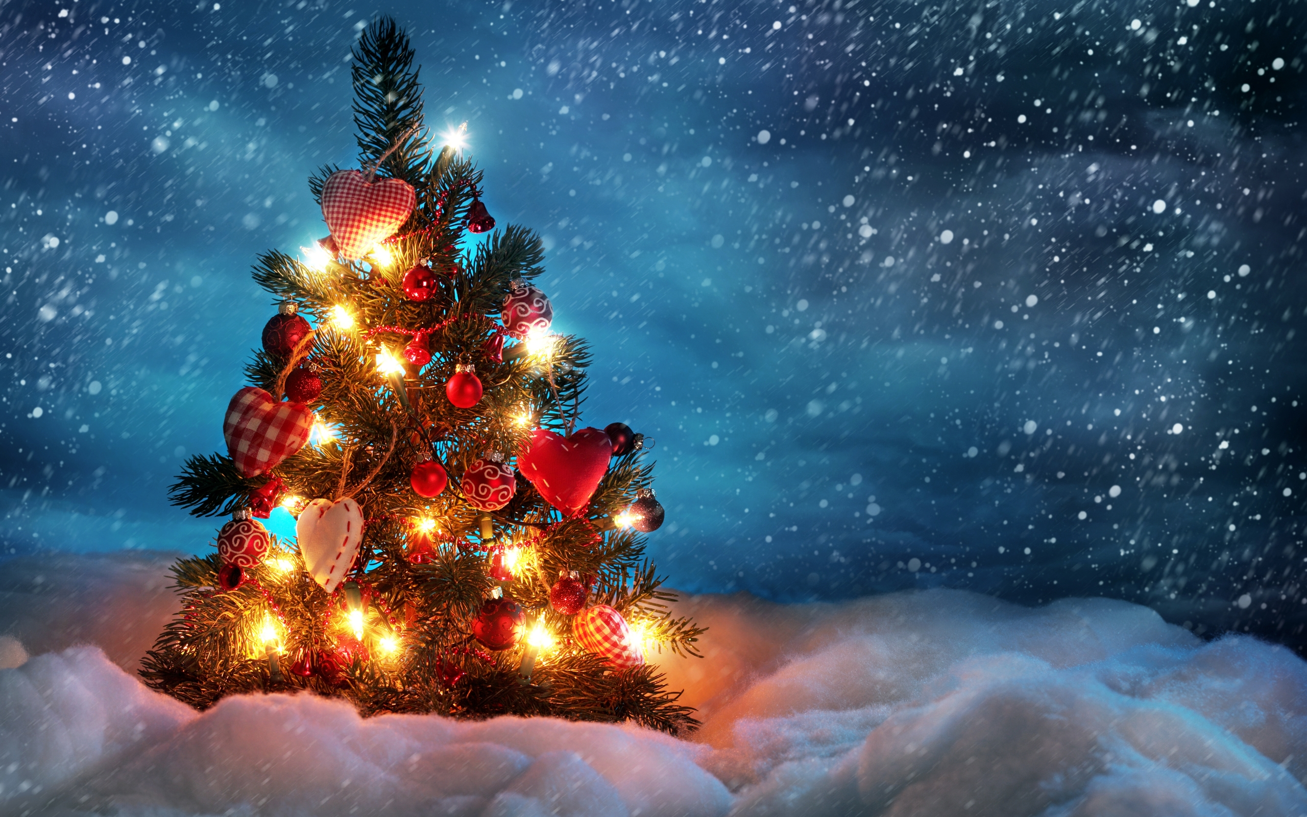 Beautiful Christmas Tree #4171932, 2560x1600 | All For Desktop