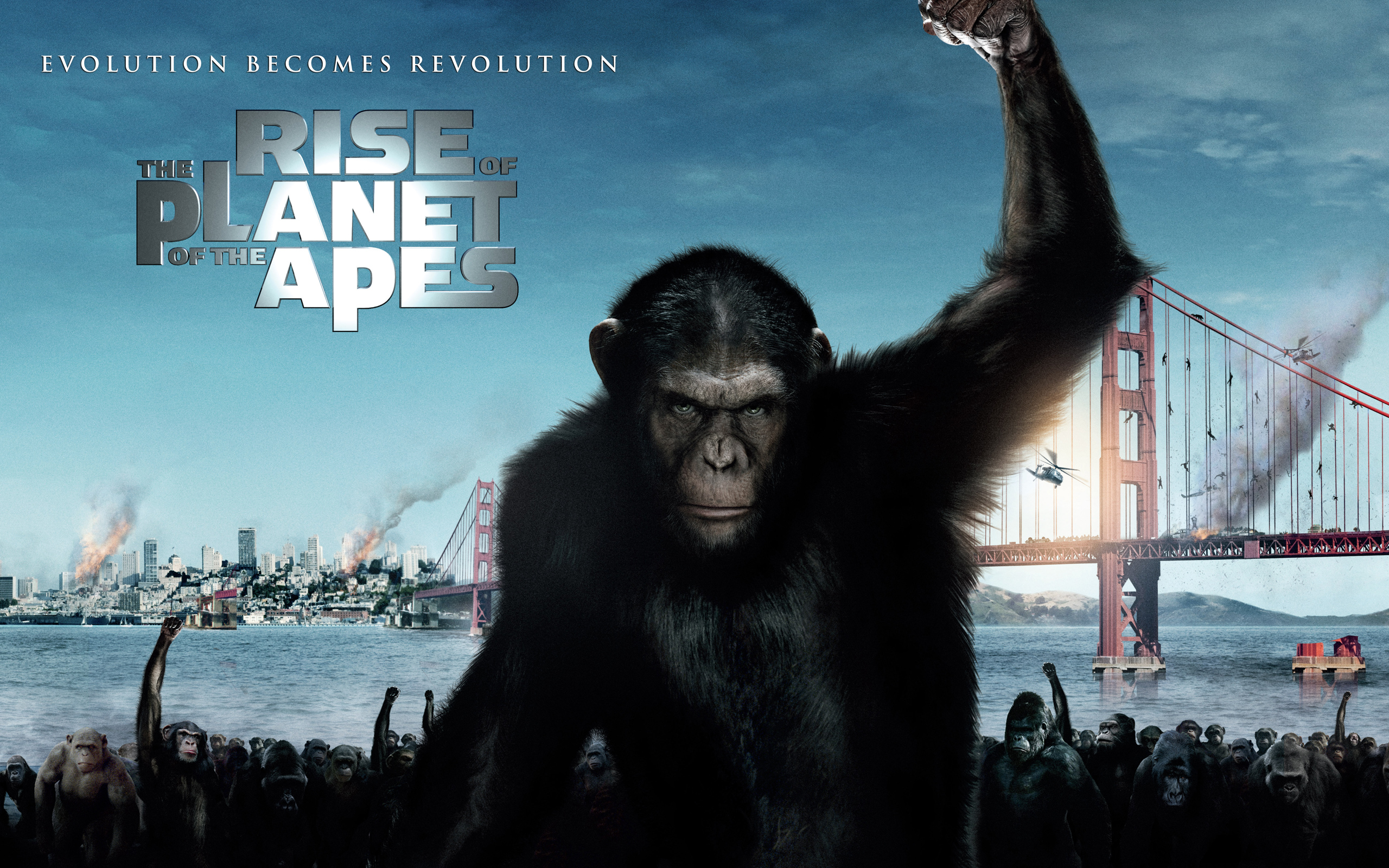 2011 Rise of the Planet of the Apes 2659.8 Kb