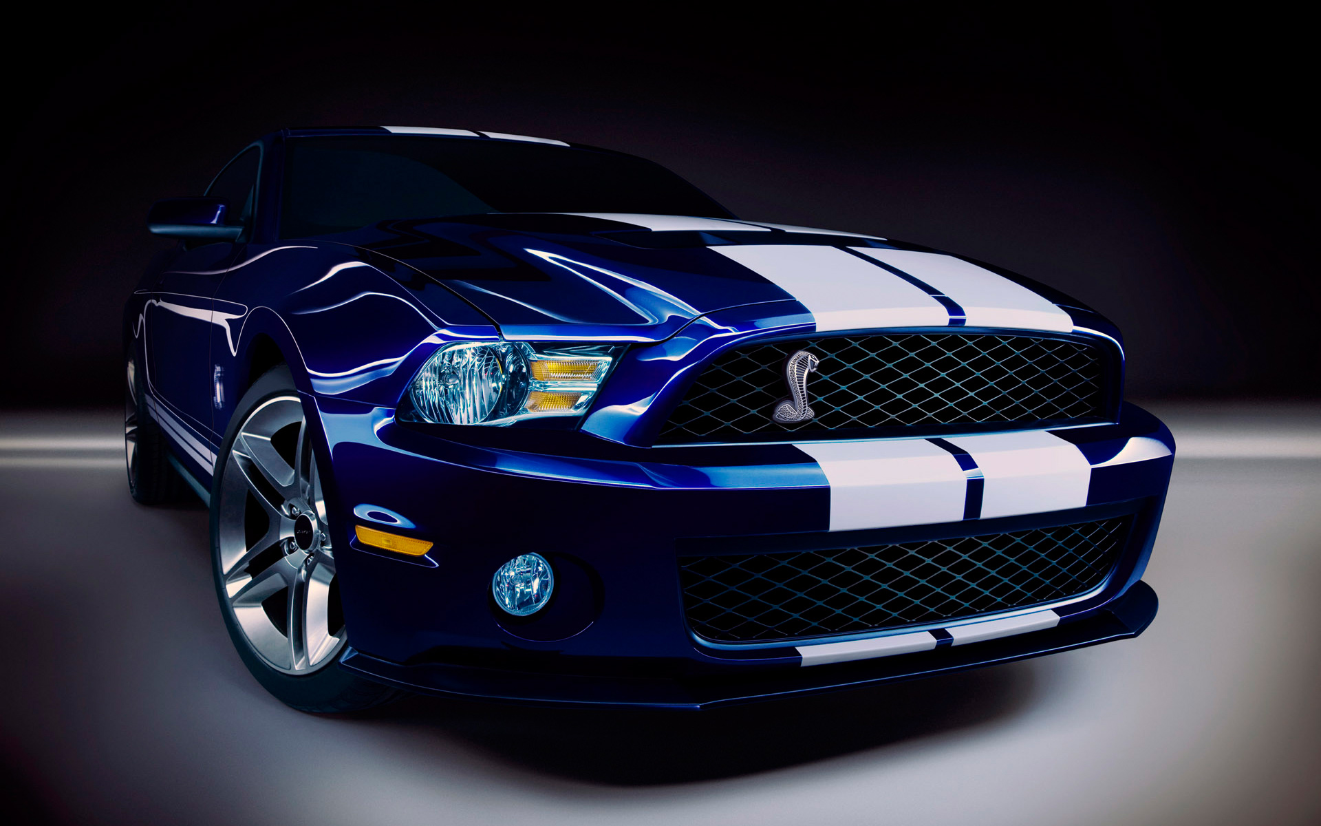 Ford Shelby GT500 629.65 Kb