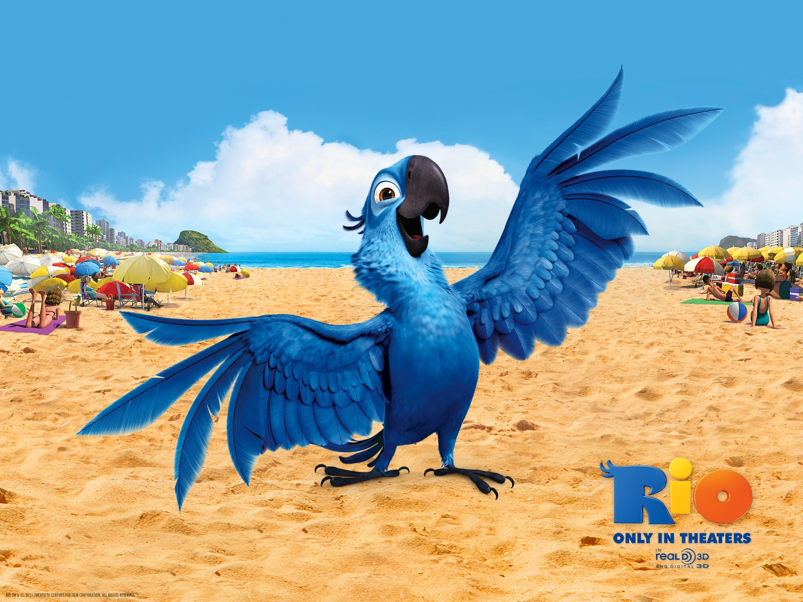 Blu Bird in Rio 754.17 Kb