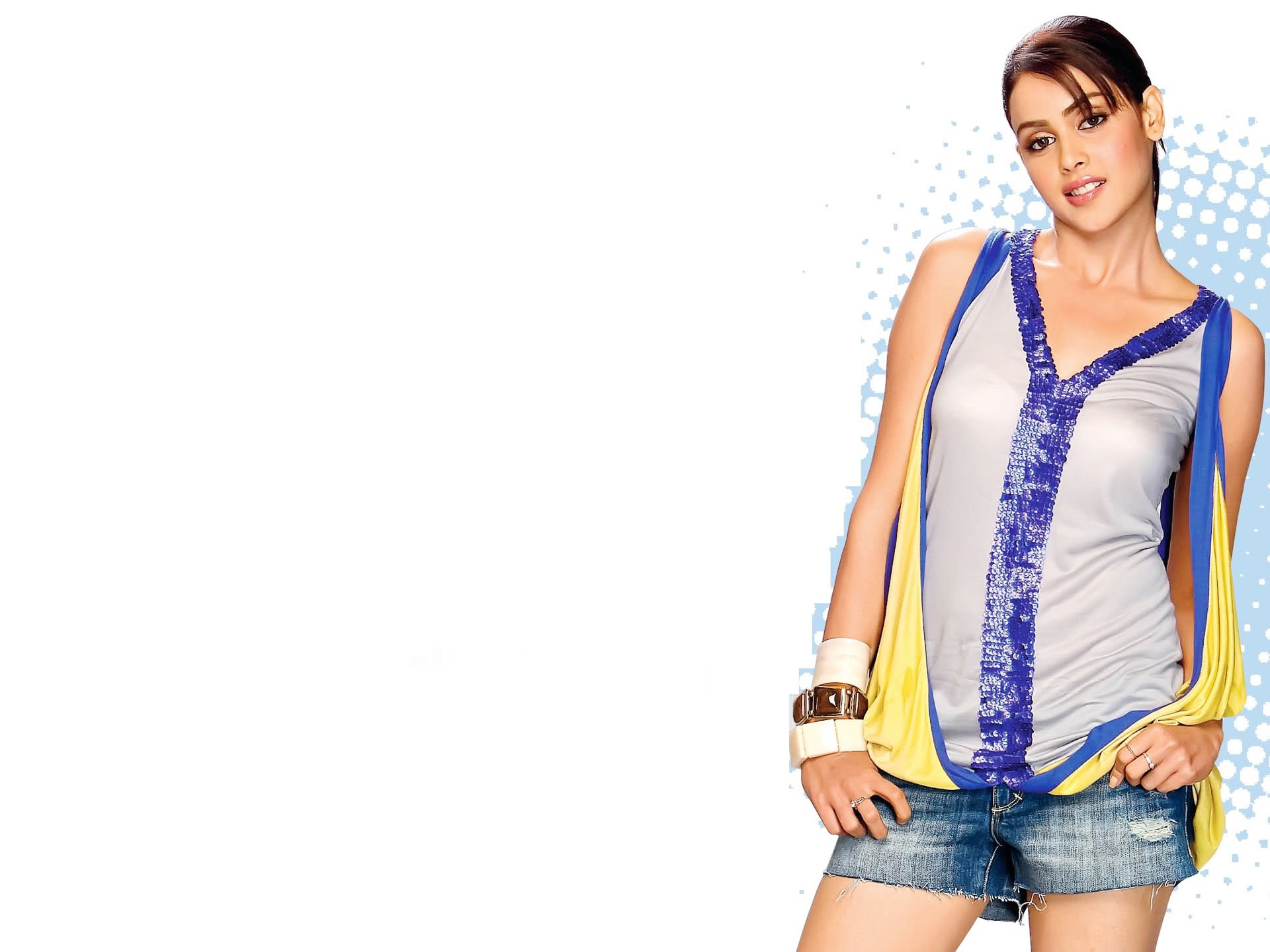 Genelia Latest 2011 207.26 Kb