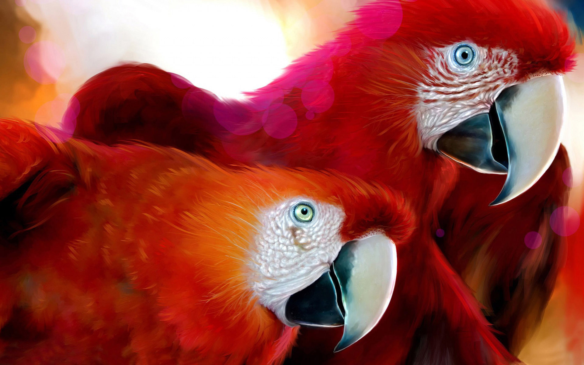 Parrots Widescreen 623.04 Kb