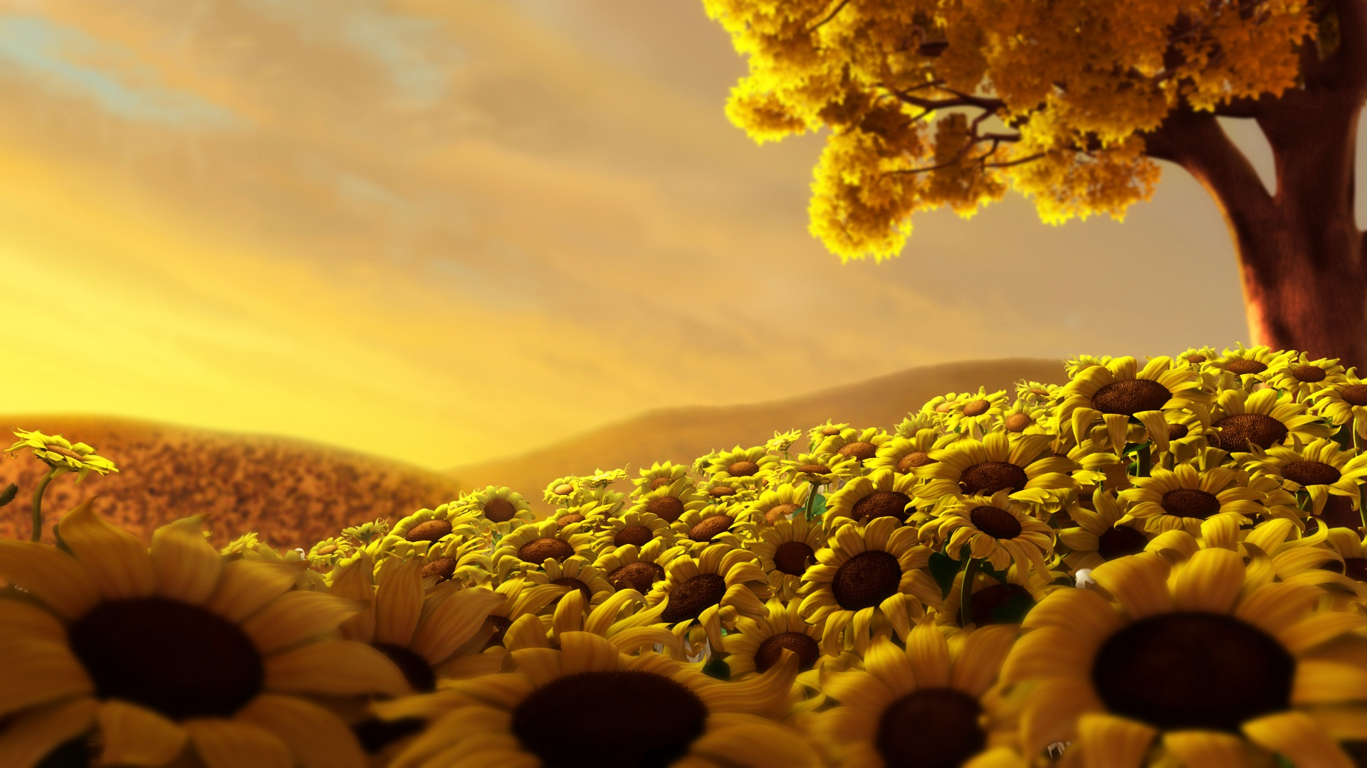 Sun Flower World HD