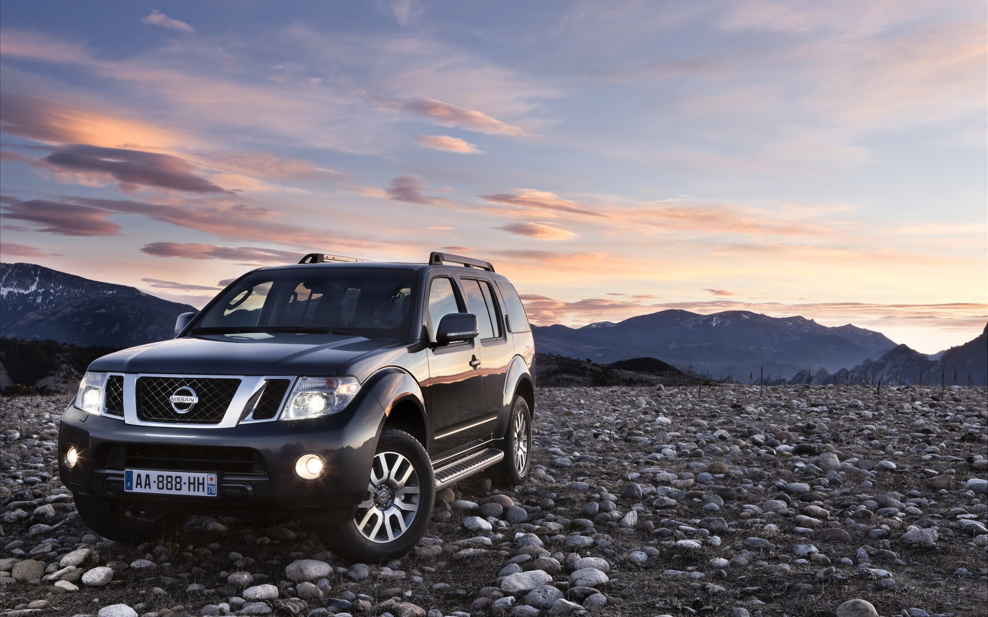 2011 Nissan Pathfinder and Navara 379.17 Kb