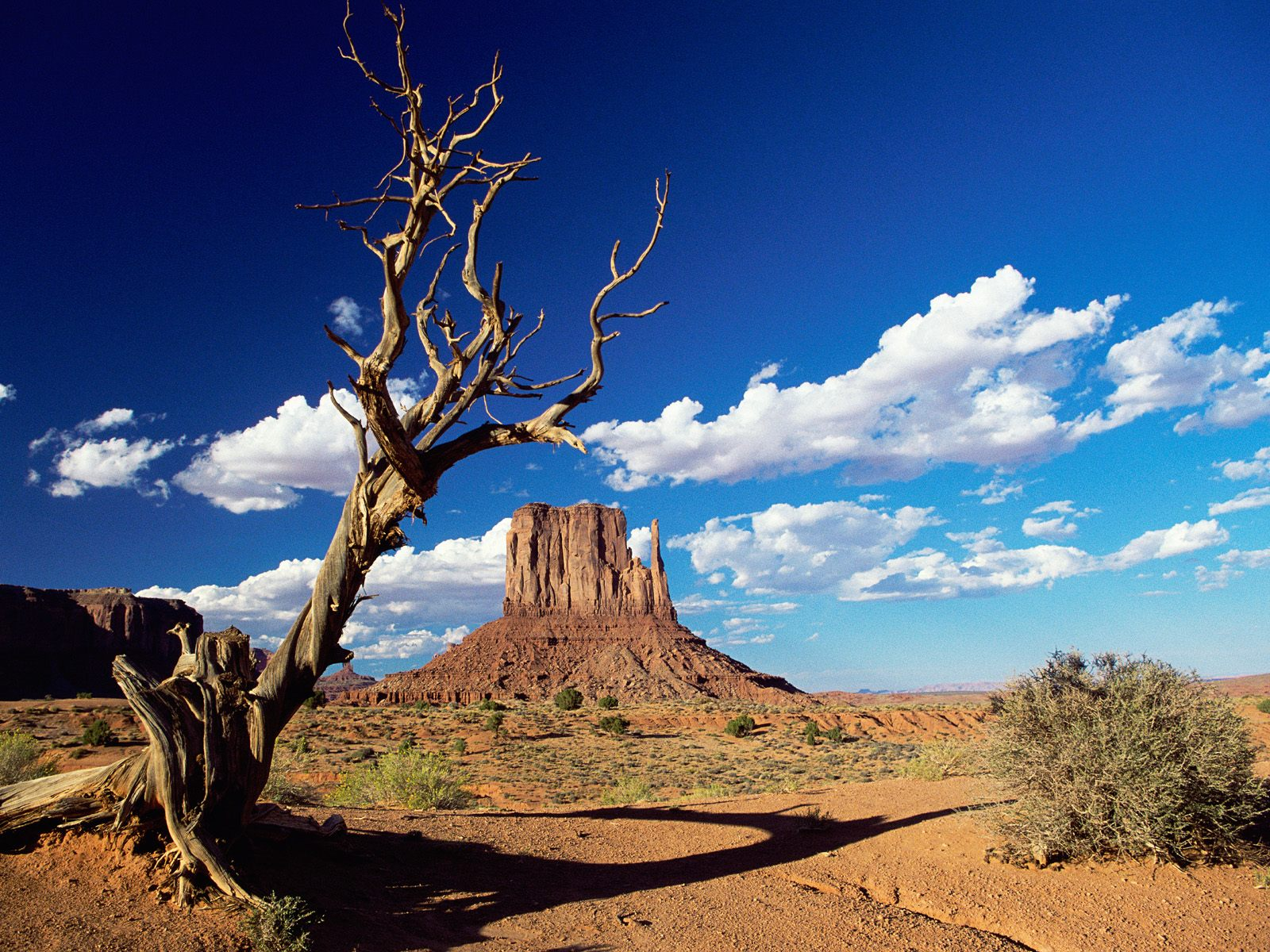 Monument Valley  Arizona 526.49 Kb
