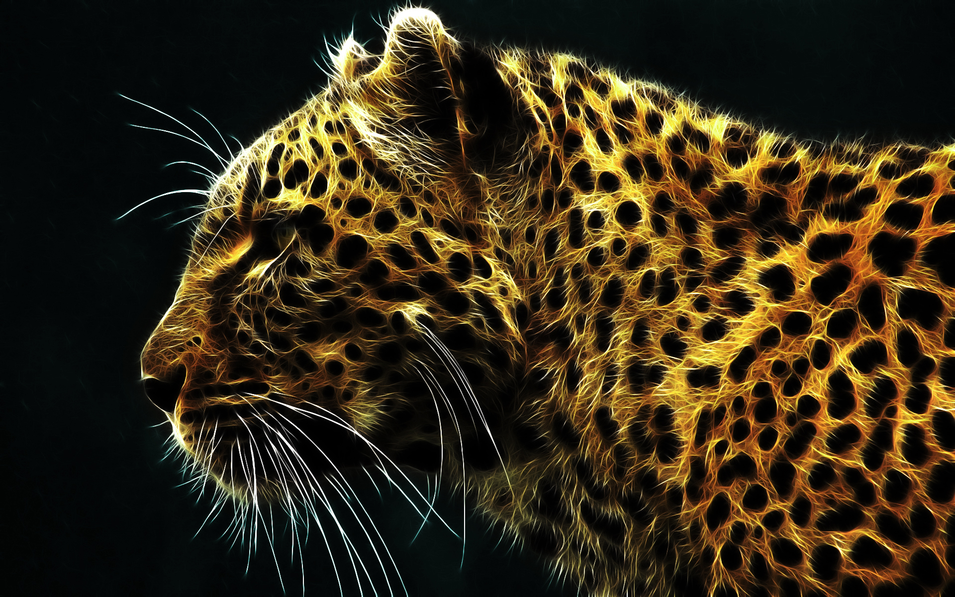 Digital Leopard 295.66 Kb