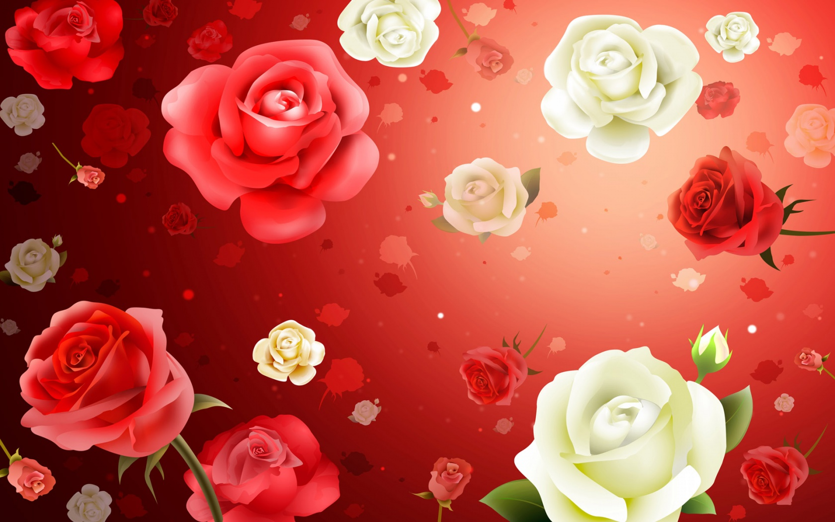 Roses HD Widescreen 307.17 Kb
