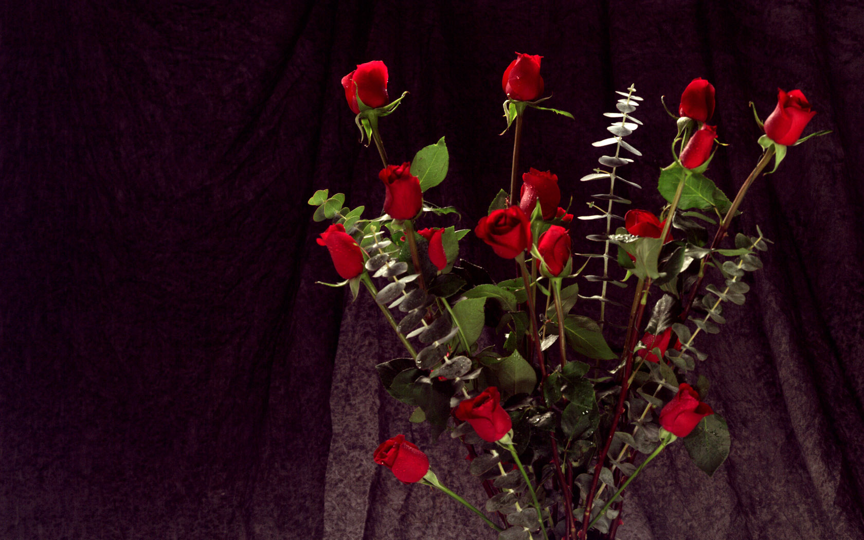 Bunch of Red Roses 100.99 Kb