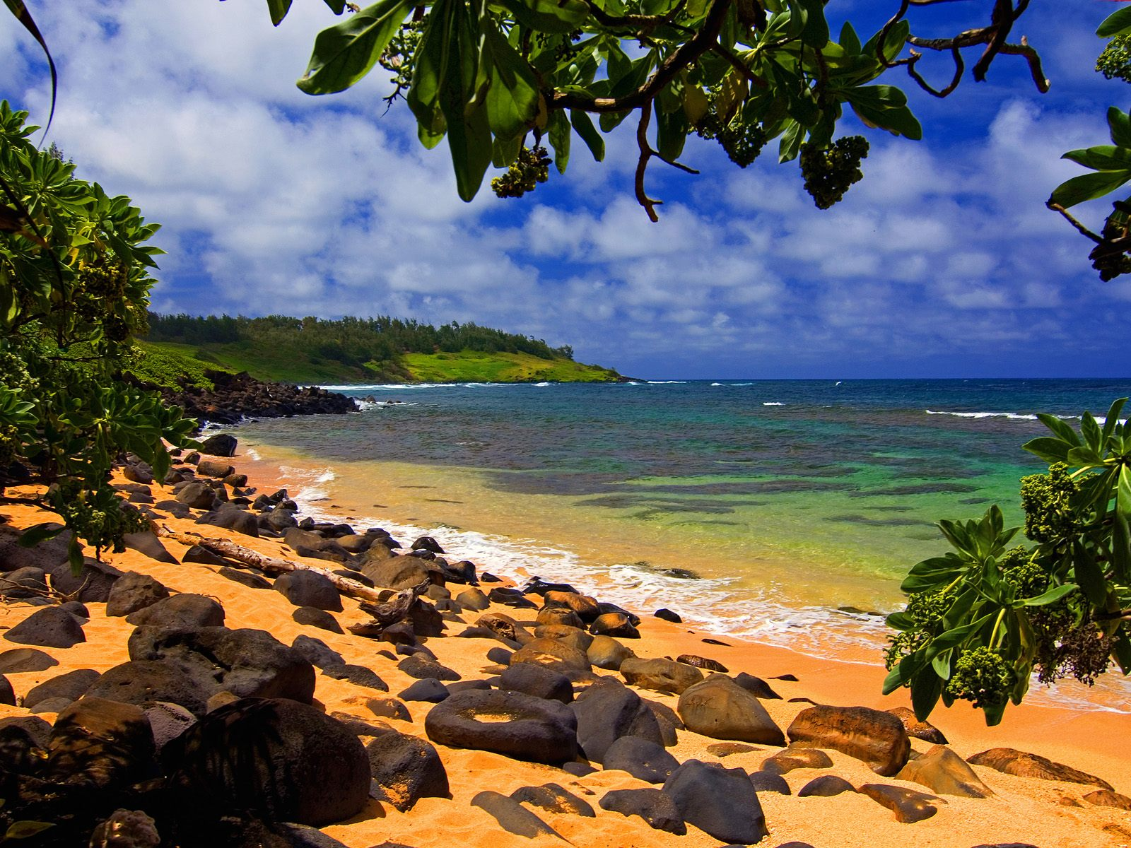 Beach Shade Hawaii