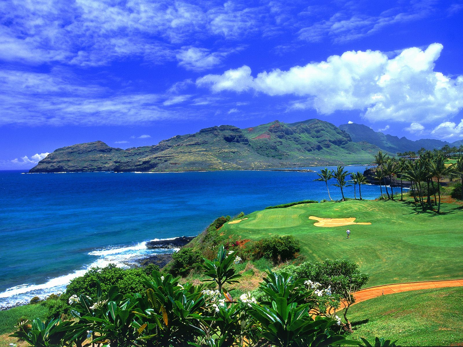 Golf Hawaii 426.07 Kb