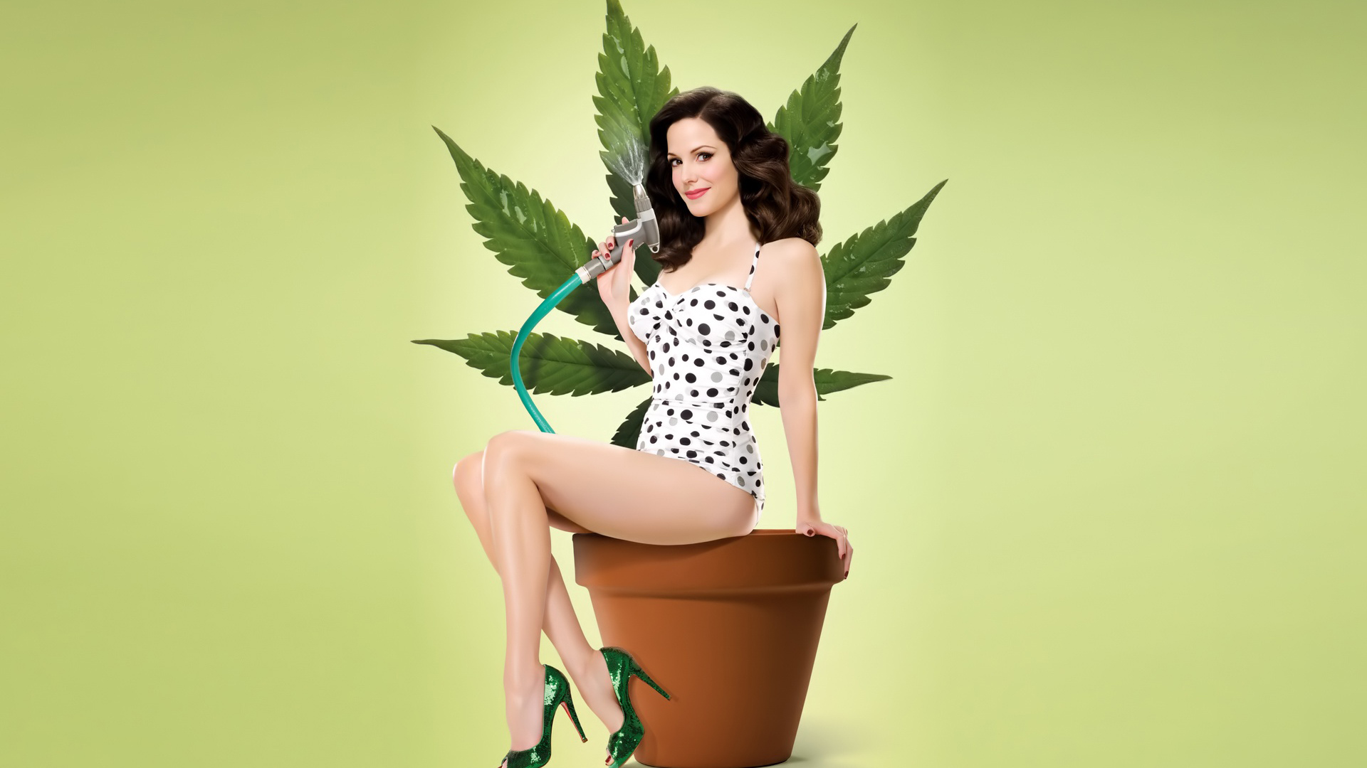 Weeds Season 4 HDTV 1080p