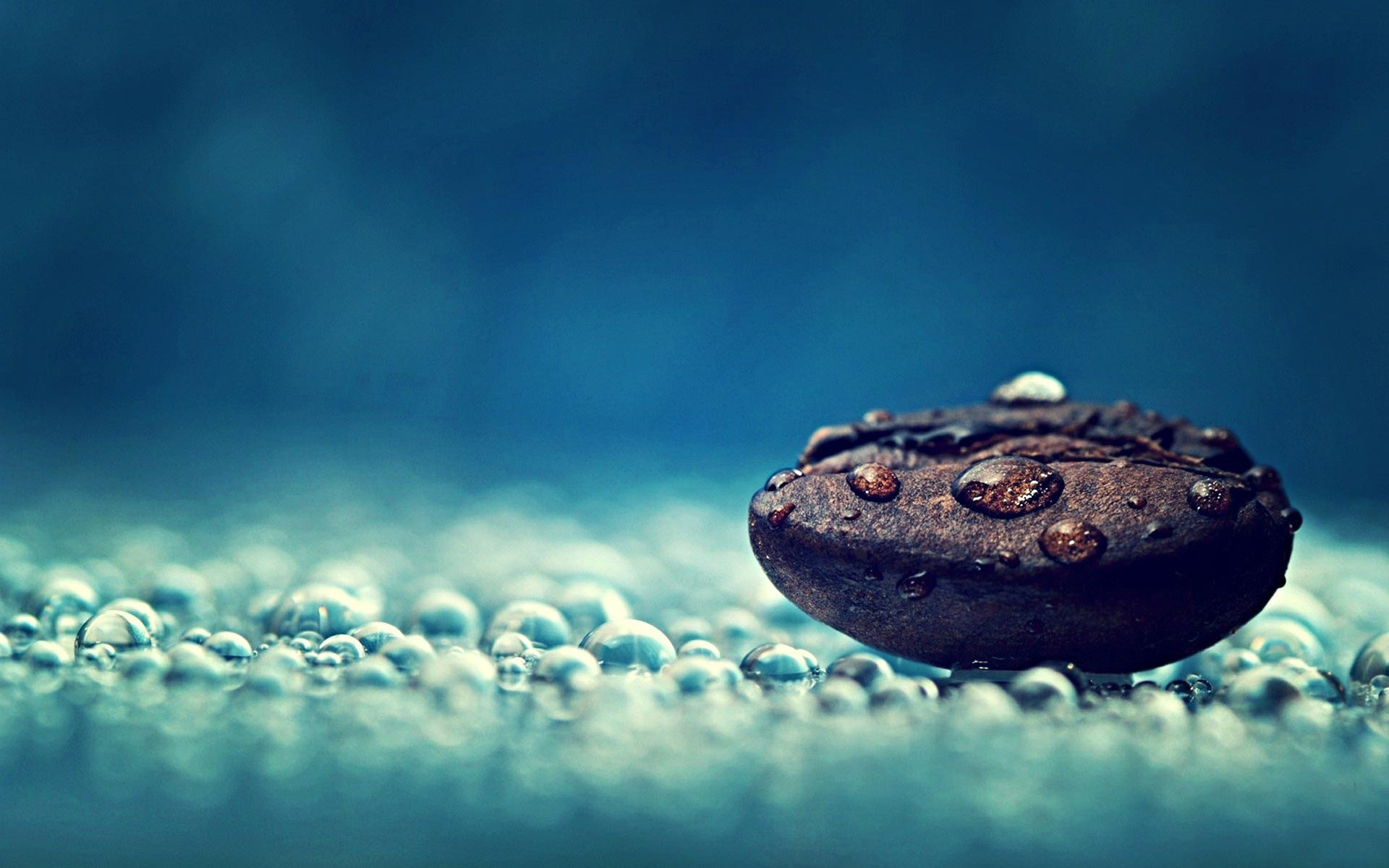 Coffee Bean with Water Drops Wallpaper