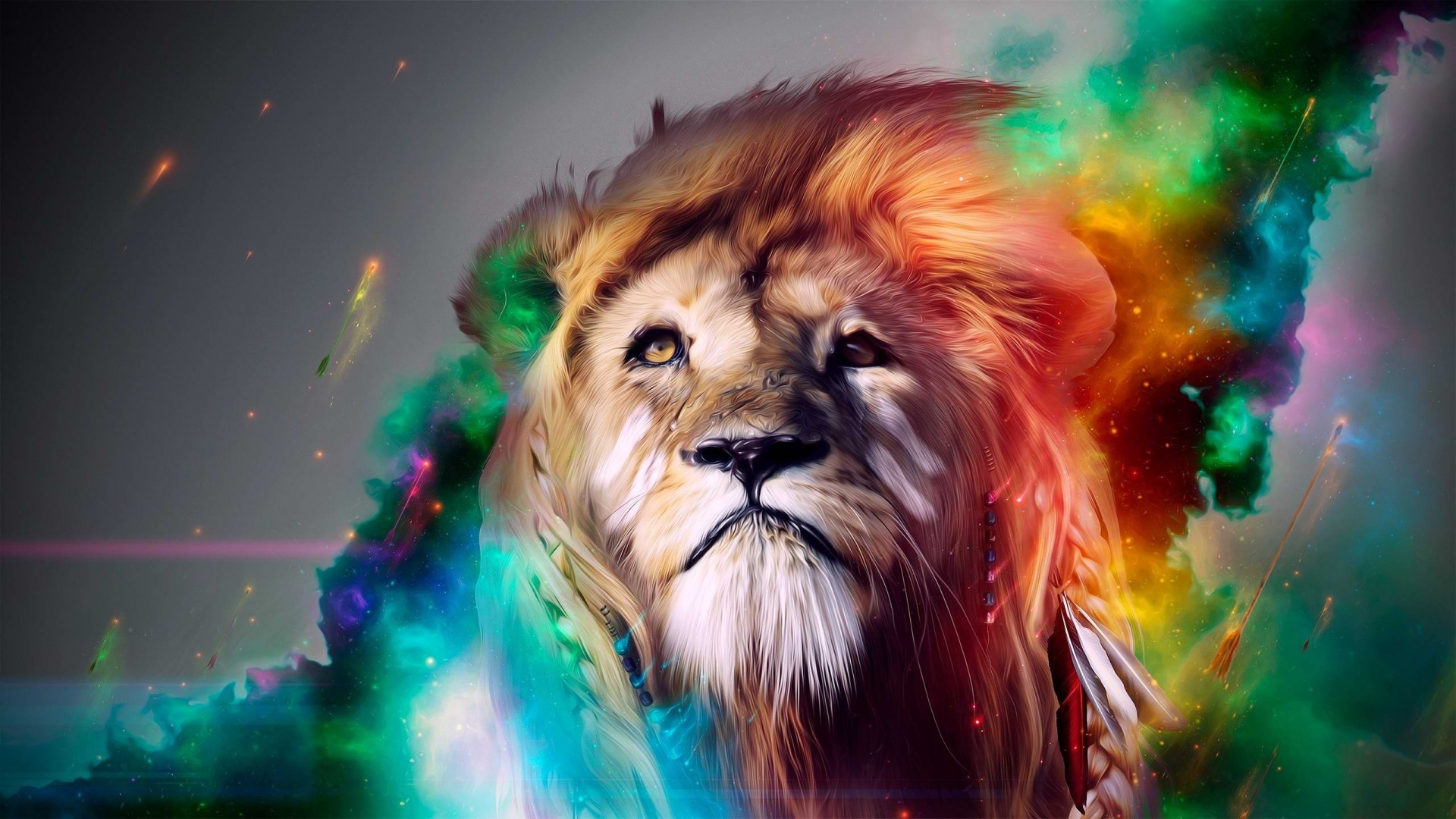 Lion Look Colorful Wallpapers