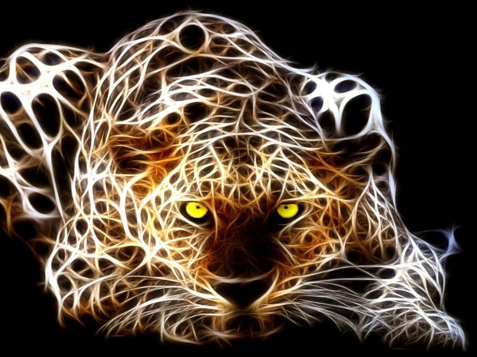 Illuminated Leopard On Wallpaper 3d 4234955 1600x1200 All For
