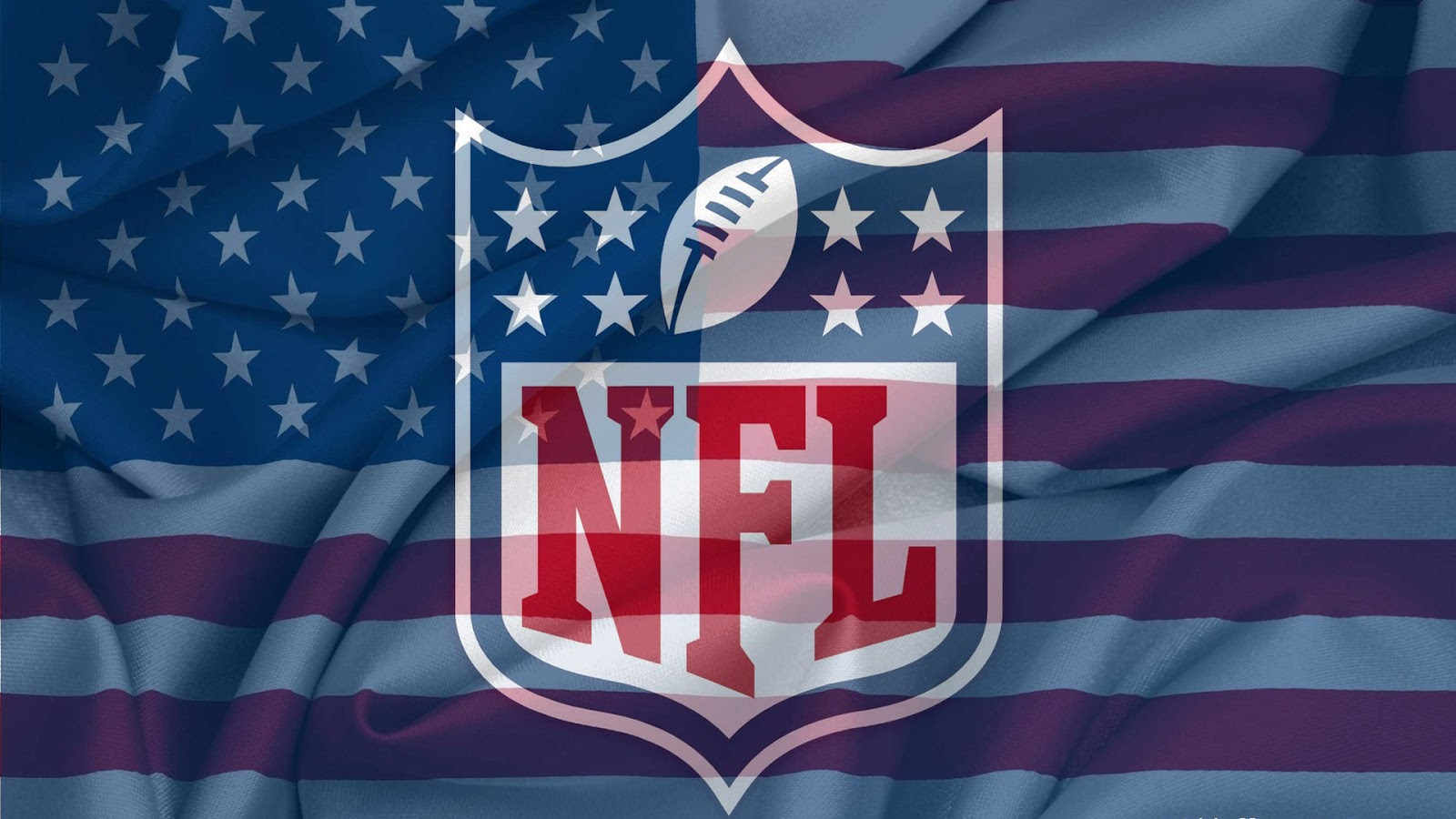 Nfl Logo and Flag