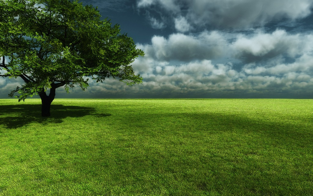 Vast Green Field Nature Background