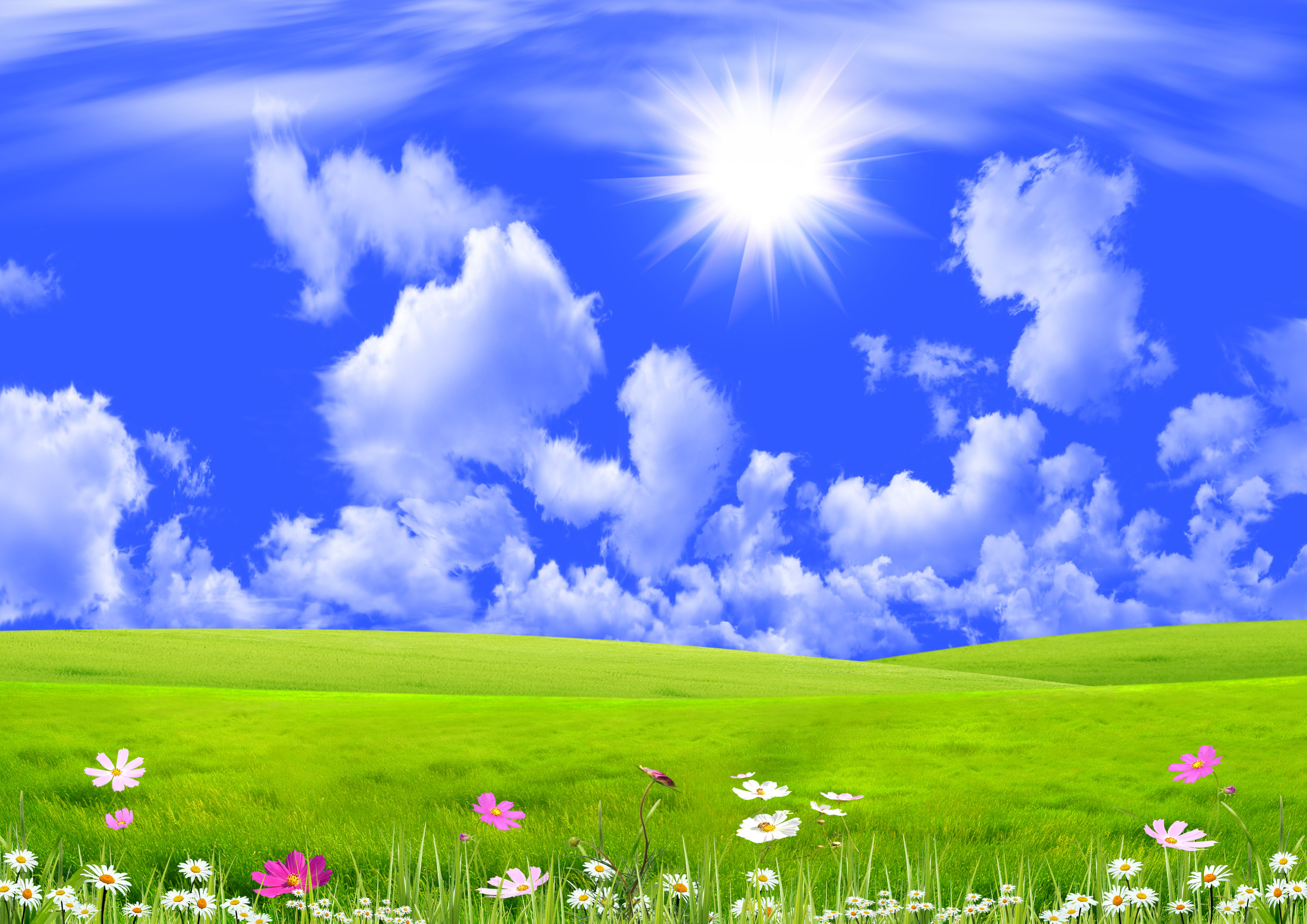 Sunshine Nature Background 302.56 Kb