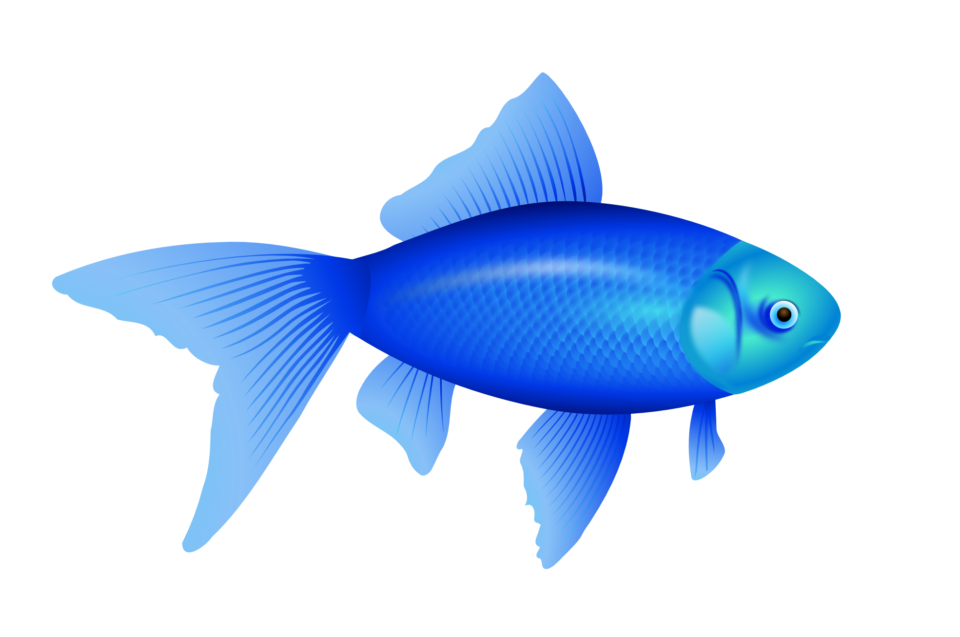 Blue Cartoon Fish 1446.56 Kb