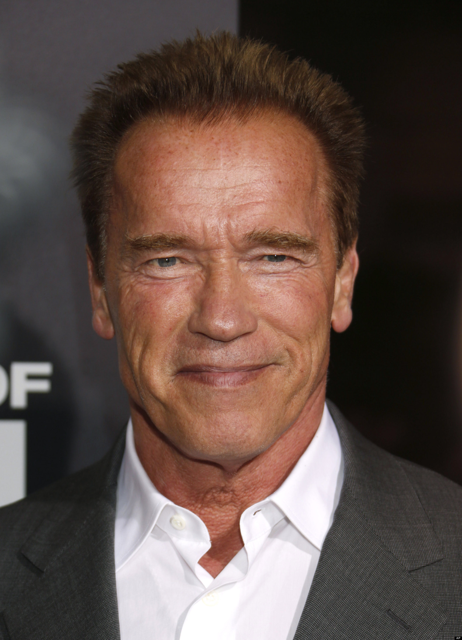 Activist arnold schwarzenegger 4239269 1536x2128 all for desktop activist arnold schwarzenegger voltagebd Image collections