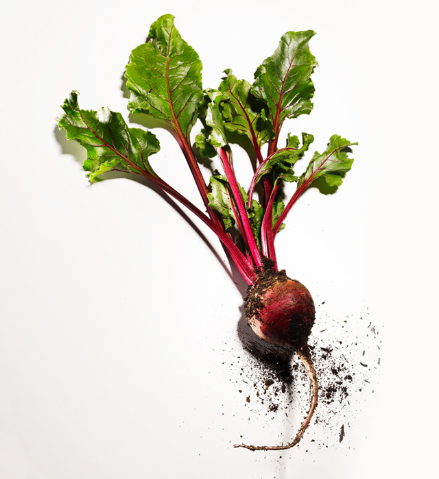Beet with Fresh Ground 275.74 Kb