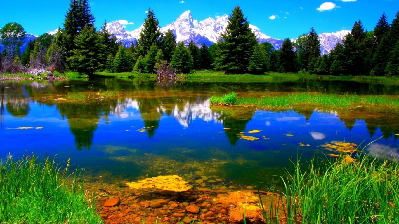 Beautiful Nature on the Mountain Lake 688.99 Kb