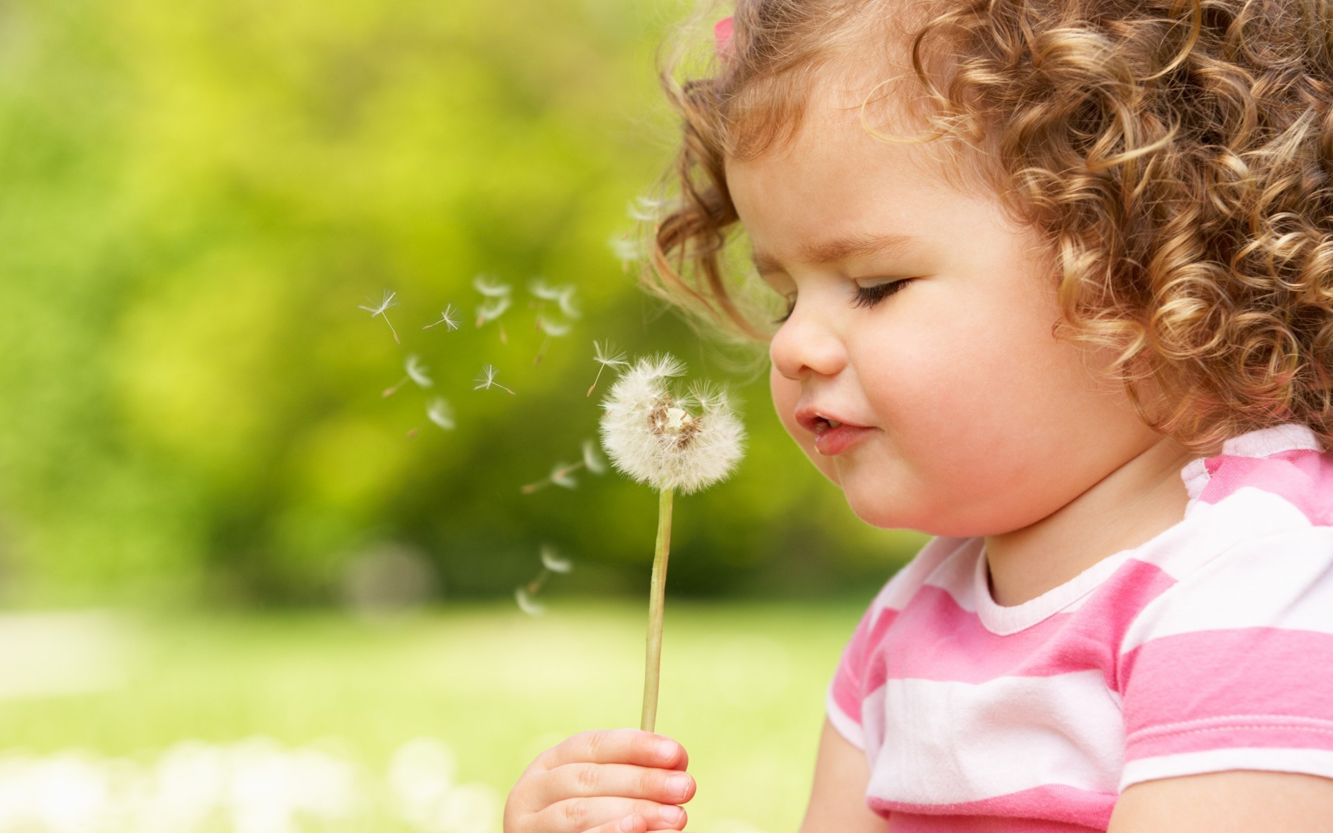 A Curly Child Blowing a Dandelion 7780.57 Kb