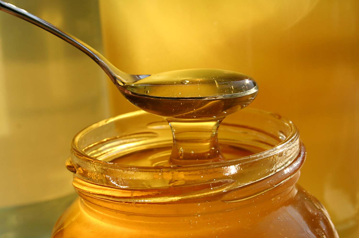 Tasty Honey in a Spoon 58.55 Kb