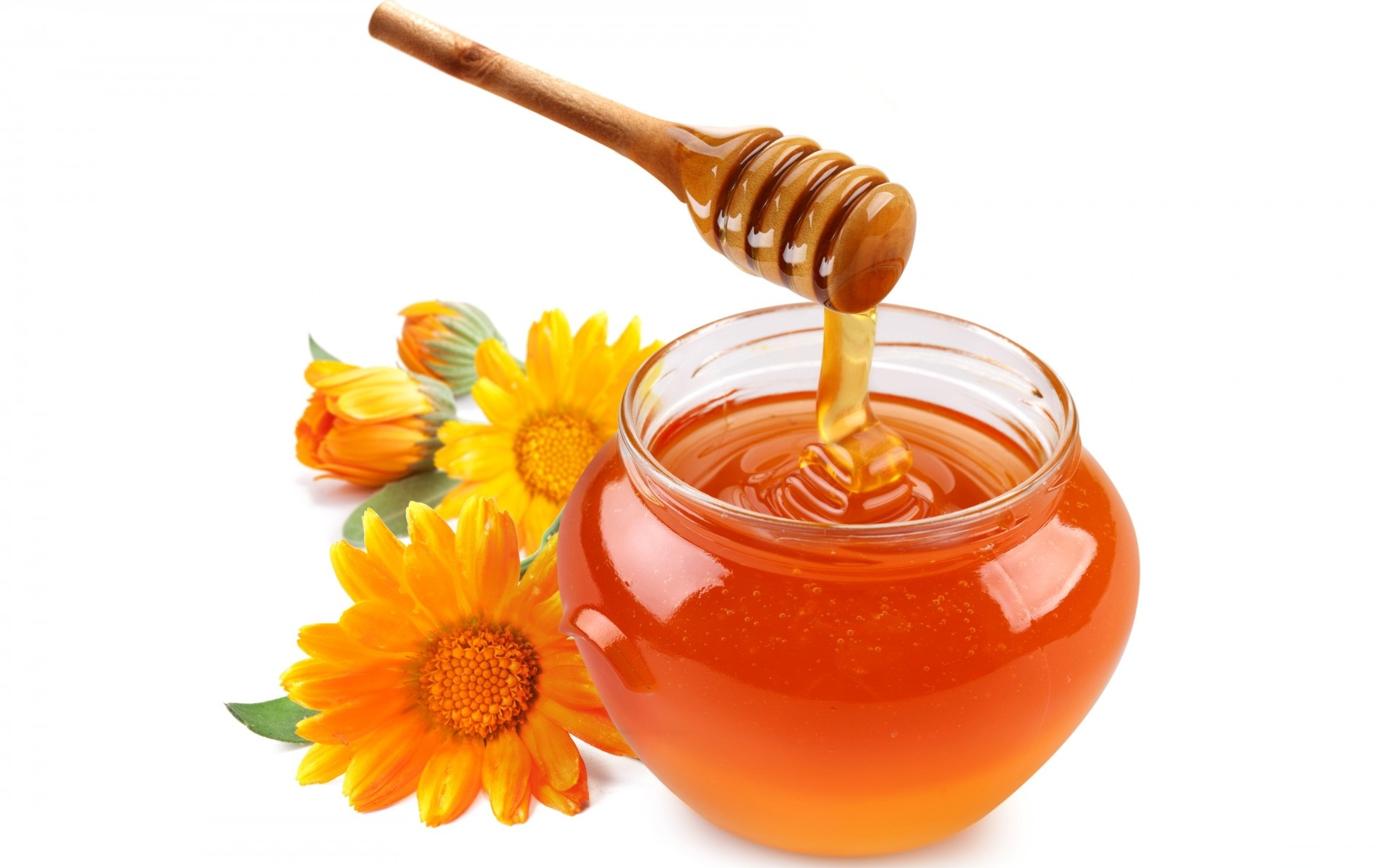 Floral Honey in a Spoon 58.55 Kb