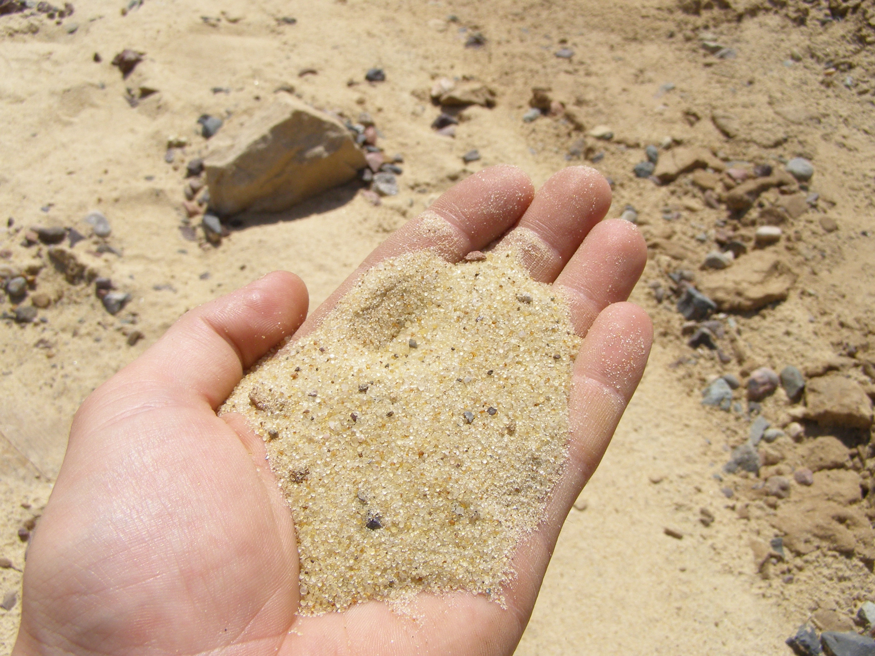 Small Sand in a Hand