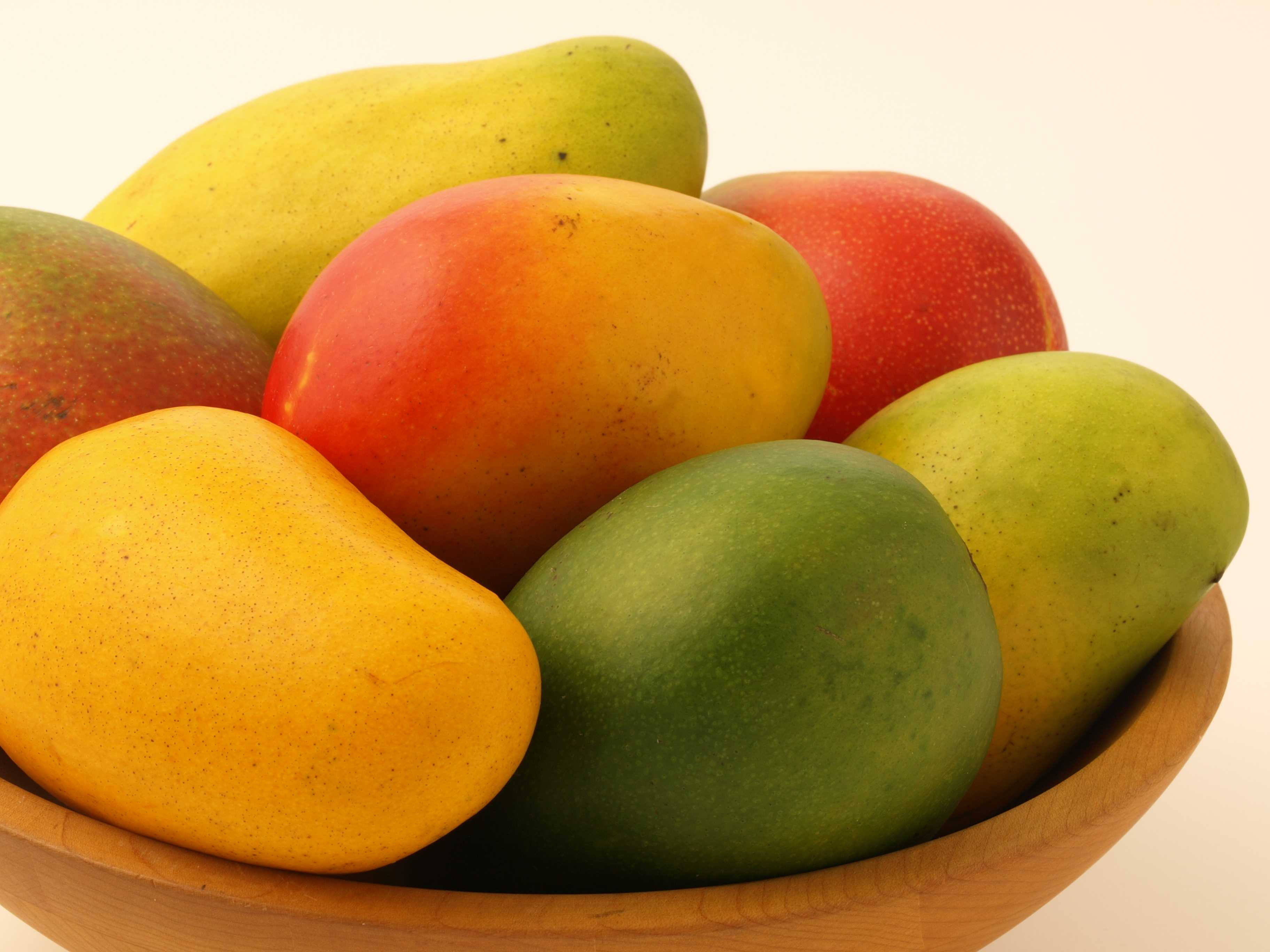 Ripe and Unripe Mango Fruits in a Bowl 106.41 Kb