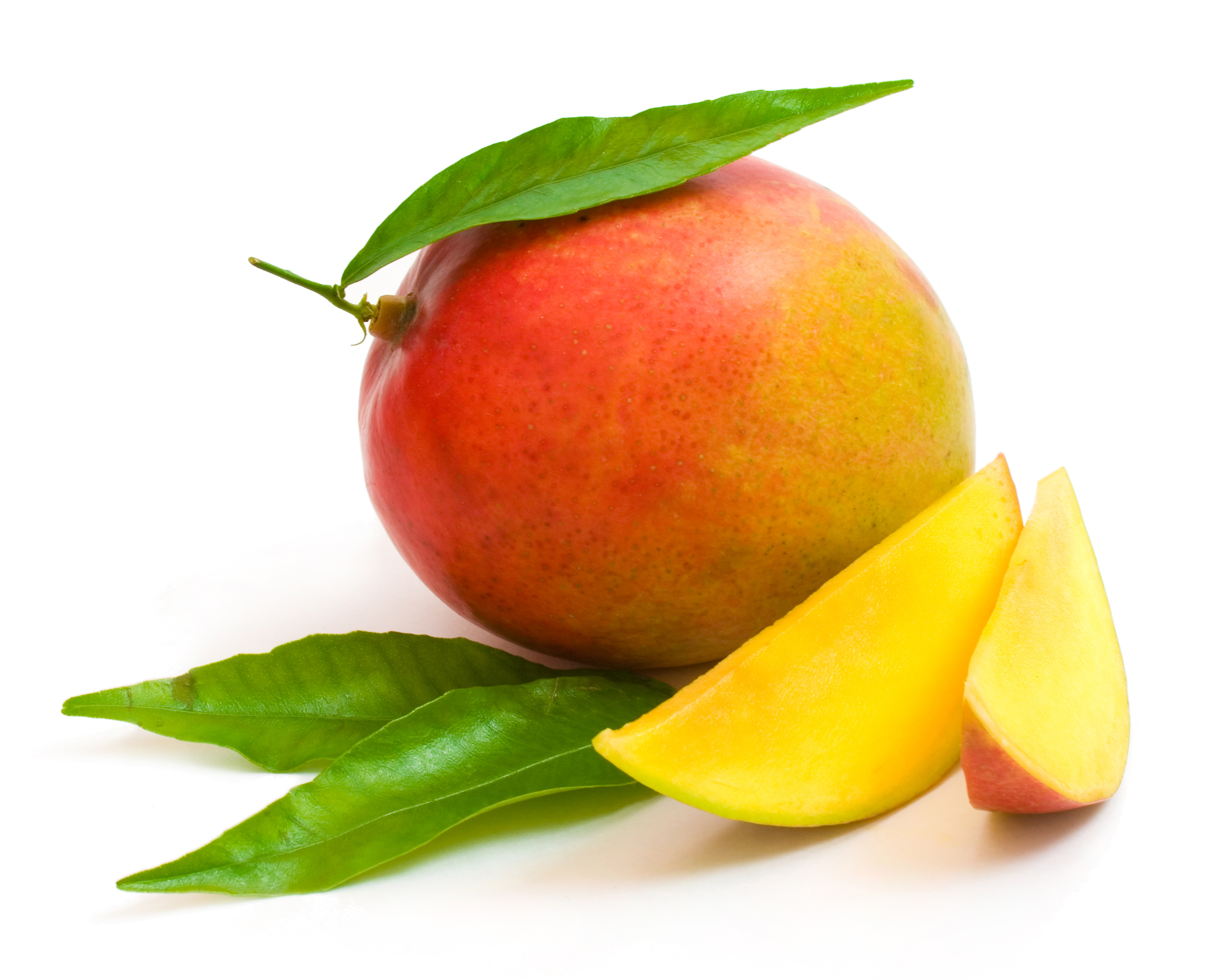 Ripe Mango with Green Leaves 106.41 Kb