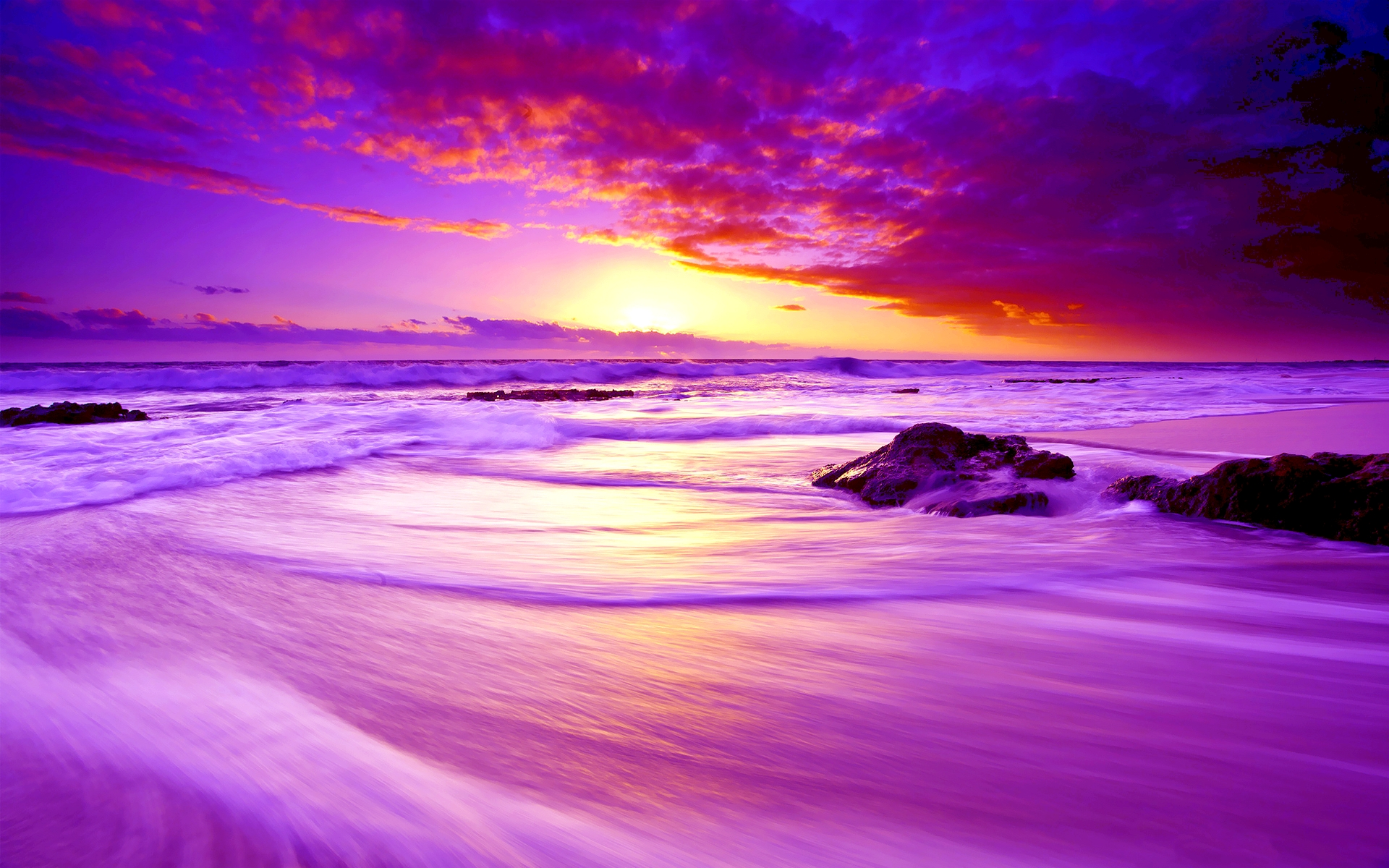 Purple Sunset Paradise 531.21 Kb