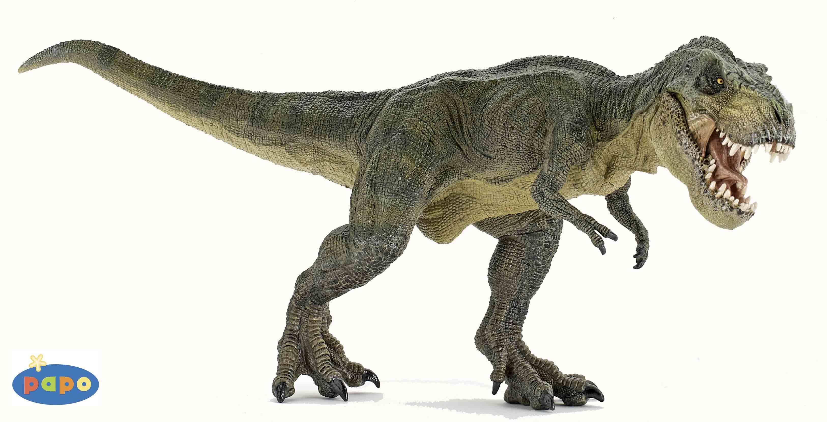 Dinosaurs Who Lived Millions Years Ago 300.04 Kb