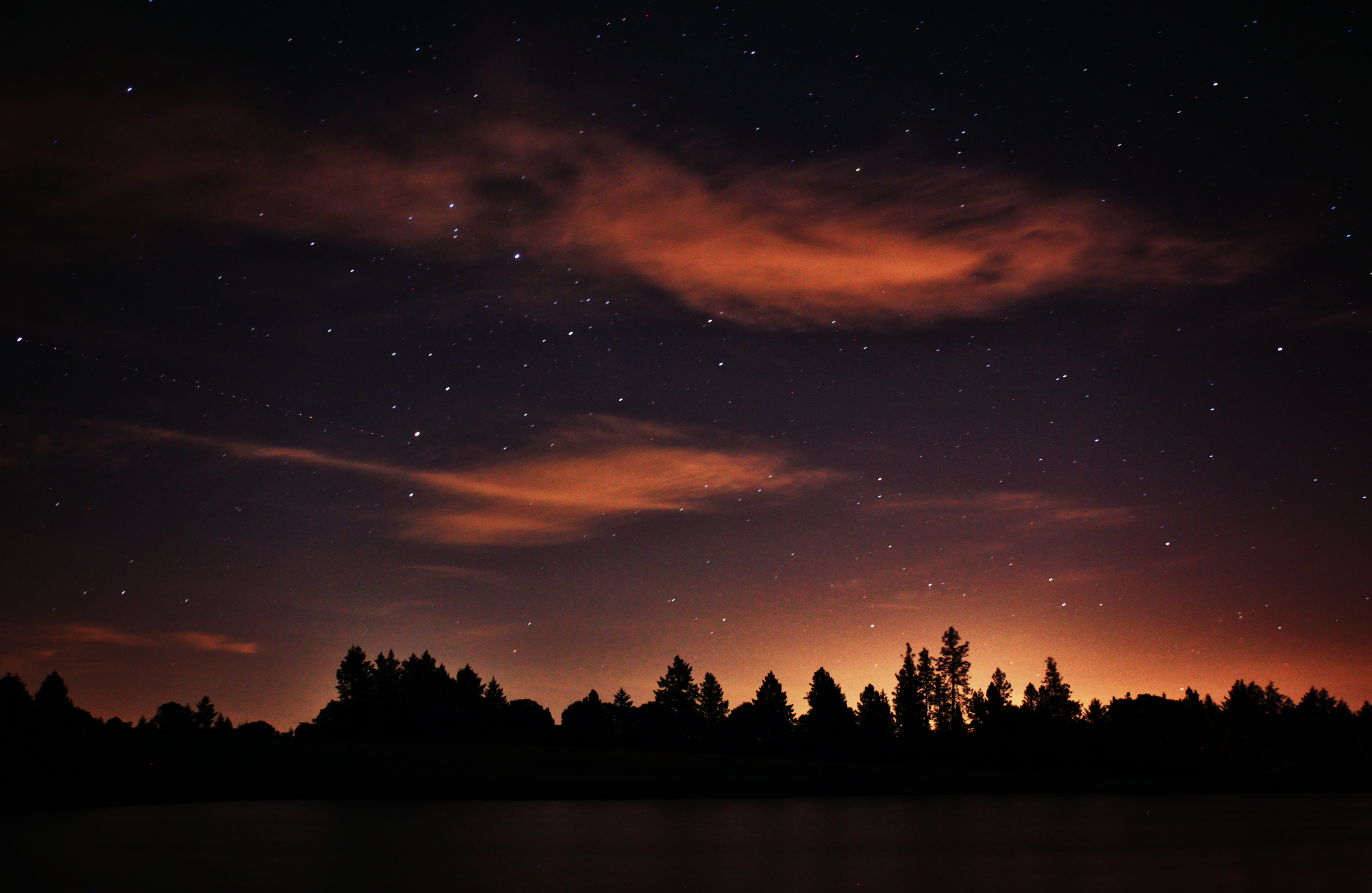 Red Night Sky over the Forest
