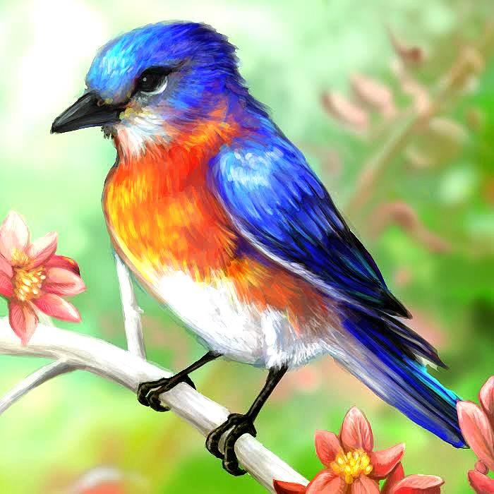 Painted Beautiful Bird