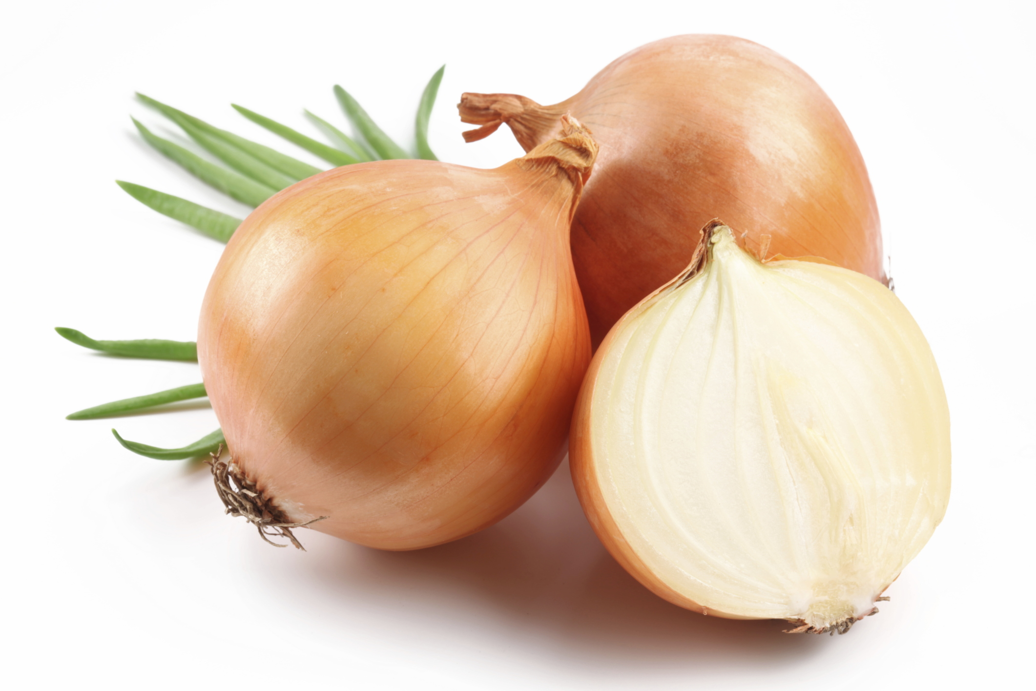 Fresh Onion in Section 195.88 Kb