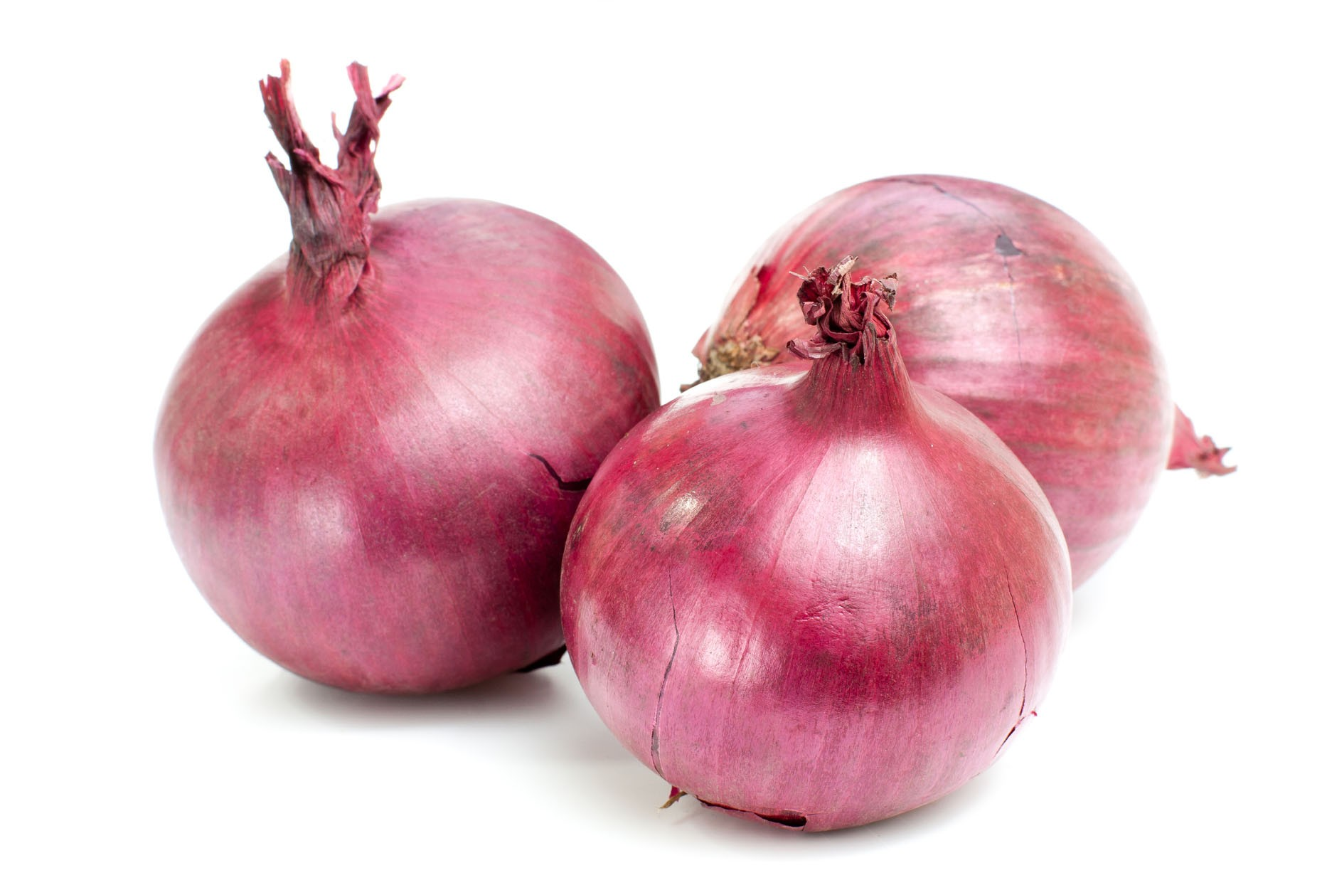 Red Onion Wallpaper 238.14 Kb