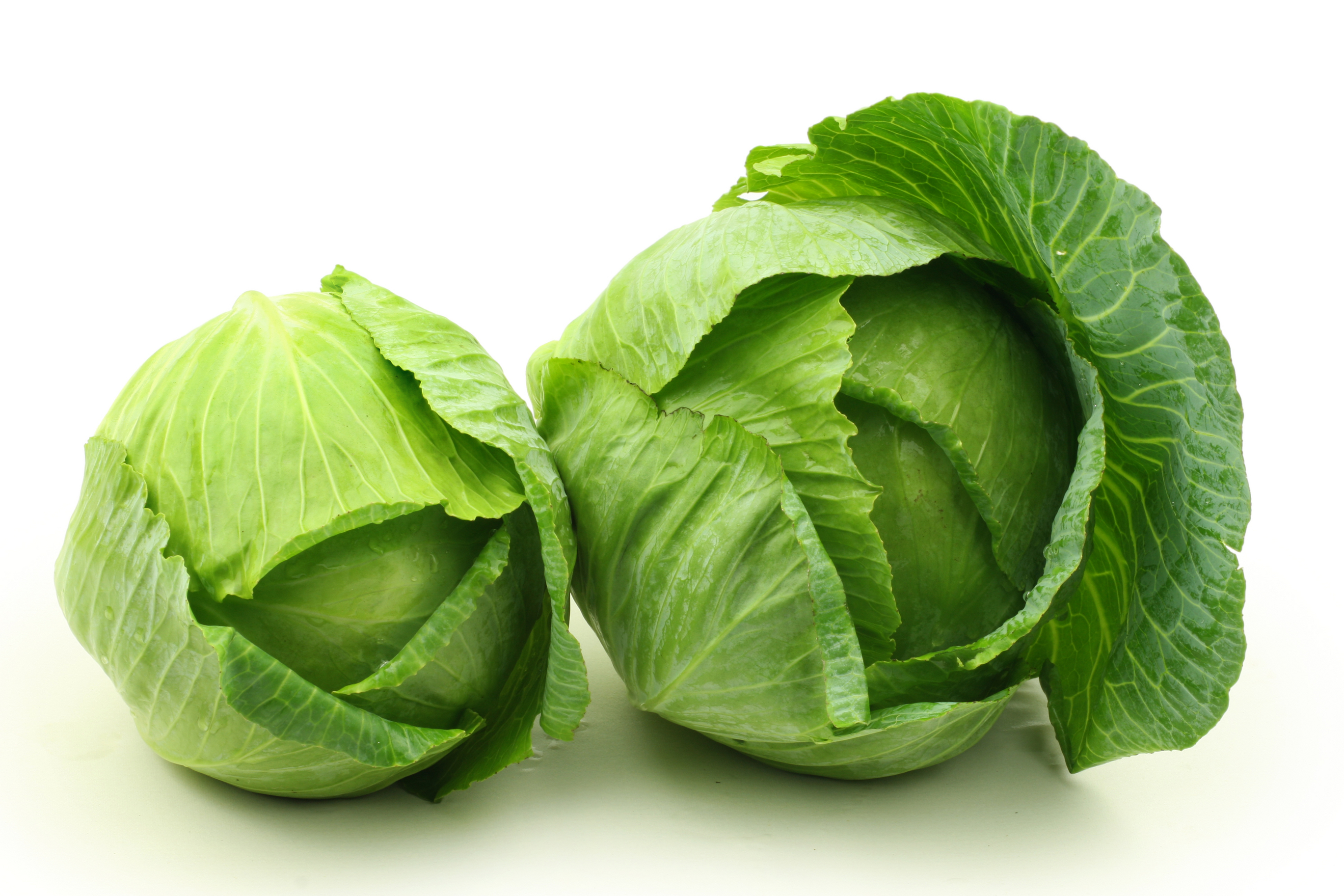 Green Cabbage Leaves 3745.92 Kb